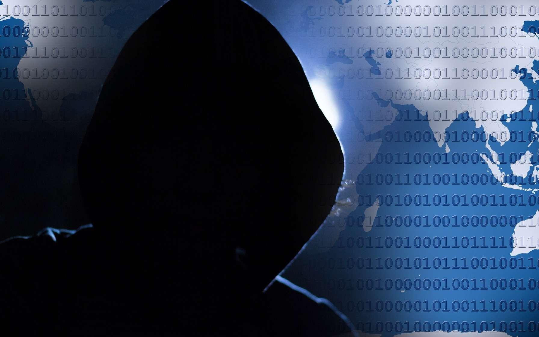 Les gendarmes du Centre de lutte contre les criminalités numériques (C3N) ont désactivé un virus sur les machines infectées, réalisant ainsi une première mondiale. © TheDigitalArtist, PIxabay