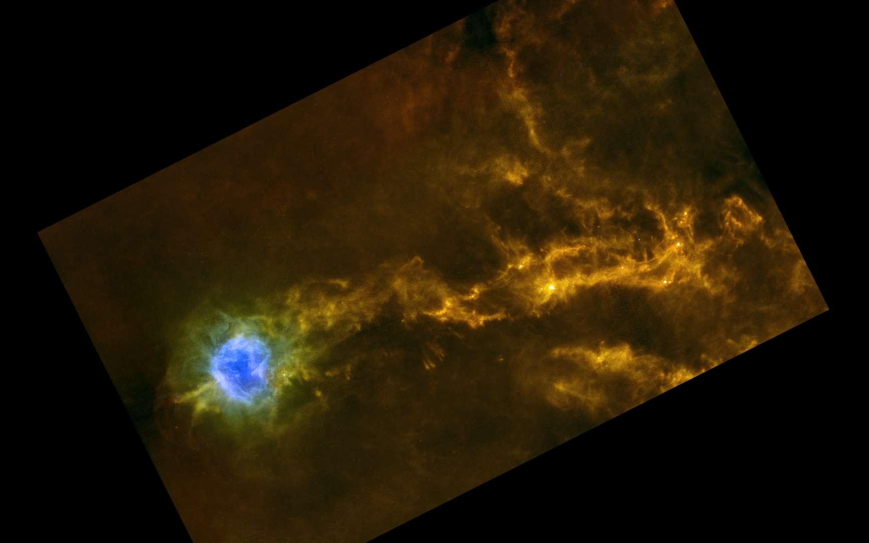 Filaments denses de gaz dans le nuage interstellaire IC5146. Ce nuage est plus connu sous le nom de la nébuleuse du Cocon. Cette nébuleuse mesure près de 15 années-lumière de diamètre et se trouve à quelque 4.000 années-lumière de nous dans la constellation boréale du Cygne. Cette image a été prise par l'observatoire spatial Herschel de l'Esa dans l'infrarouge. Les fausses couleurs correspondent aux différentes longueurs d'onde observées par le télescope (rouge = 350-500 µm, vert = 160-250 µm et bleu = 70 µm). La zone bleue est une nébuleuse éclairée par une étoile massive, plus chaude que le reste. © Esa/Herschel/SPIRE/PACS/D. Arzoumanian (CEA Saclay)