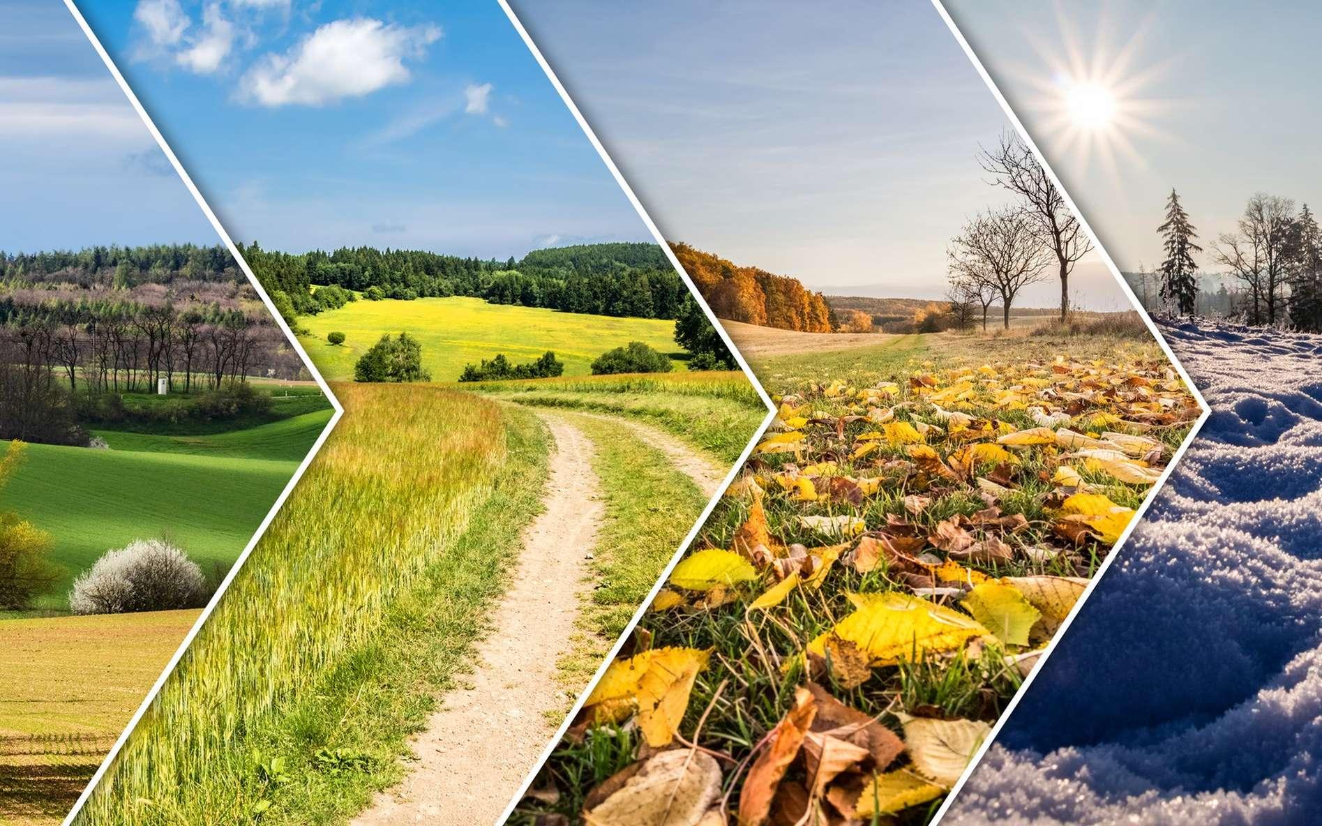 Une saison correspond à un quart de l'année délimité par un solstice et une équinoxe. © Jaroslav Machacek, Fotolia