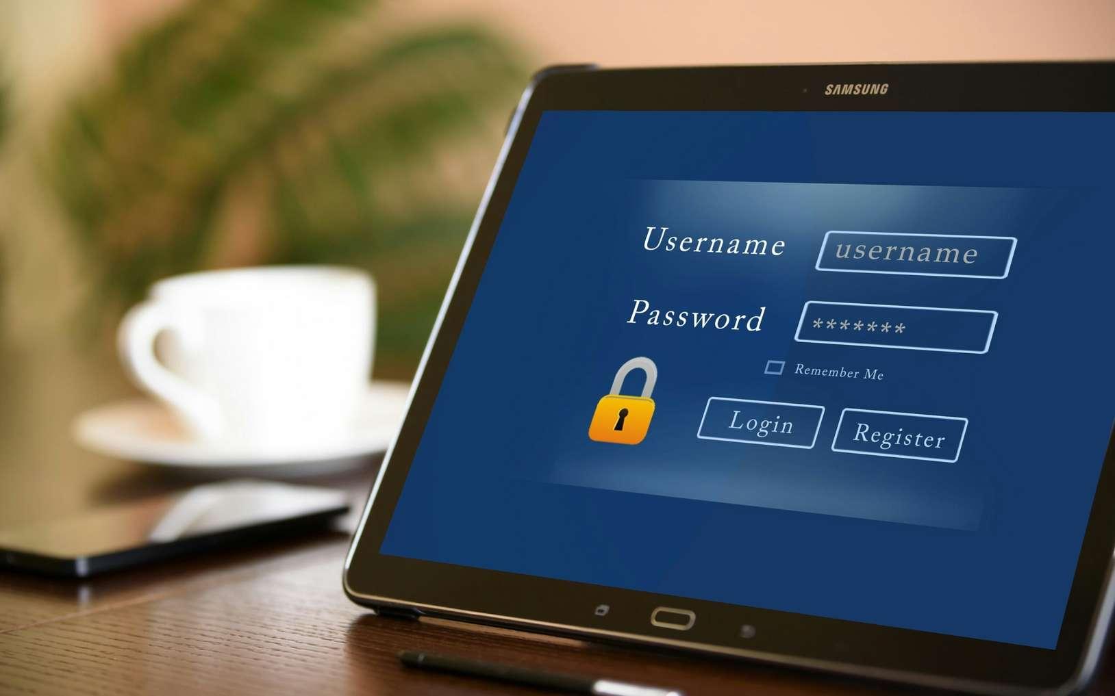 Futura procède à un tour d'horizon des meilleurs logiciels pour gérer ses mots de passe. ©Mohamed Hassan