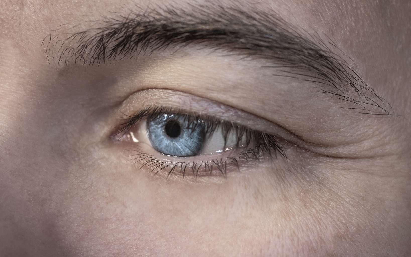 Un nouveau dispositif de rétine artificielle pourrait permettre de restaurer la vision des patients souffrant de dégénérescence maculaire liée à l'âge (DMLA) ou de rétinopathies pigmentaire. © MS Photographie, Fotolia