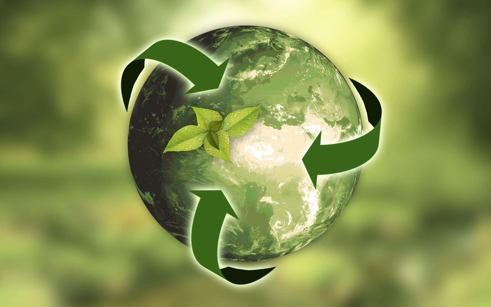 « Parce que si vous regardez la nature, les déchets n'existent pas… dans la nature, vous avez des systèmes fermés. » explique Kasper Guldager Jensen, architecte danois. © Annca, Pixabay