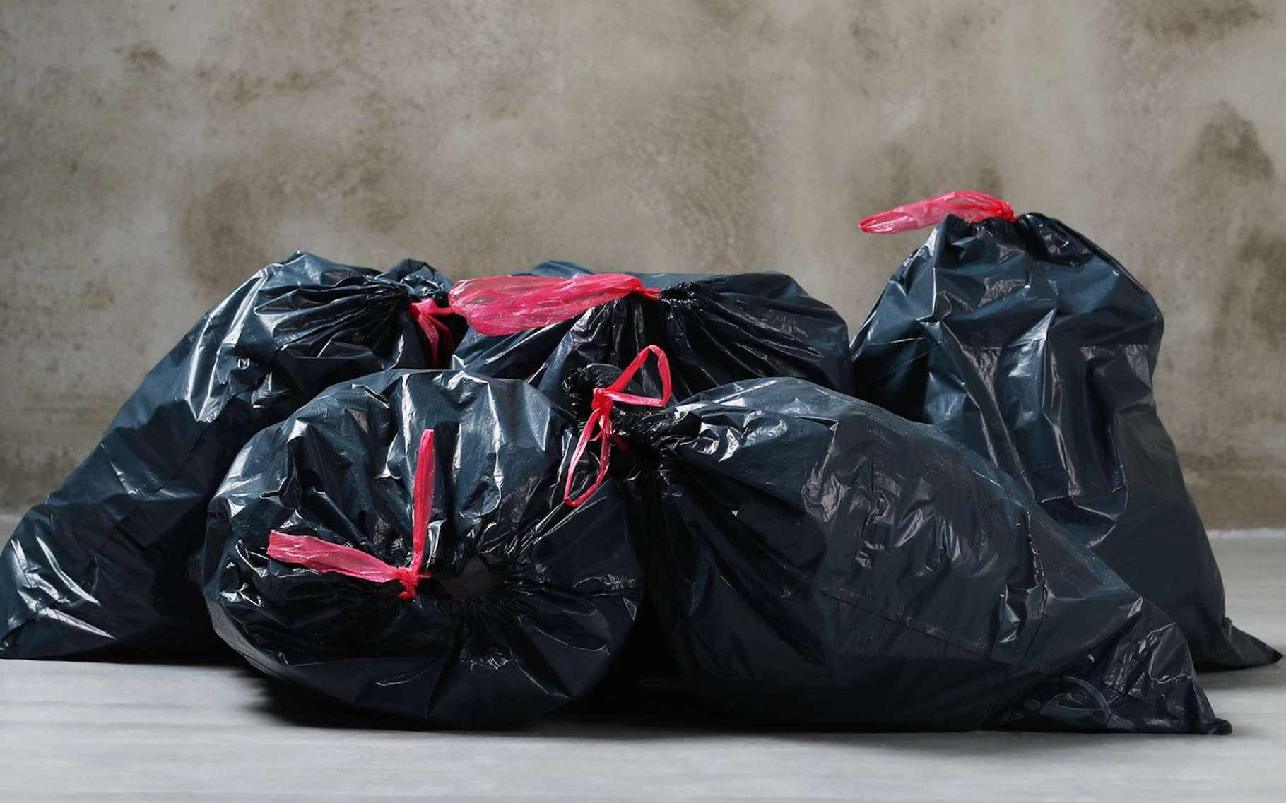 Nous produisons chacun aujourd'hui, deux fois plus de déchets qu'il y a 40 ans. © Yeko Photo Studio, Fotolia