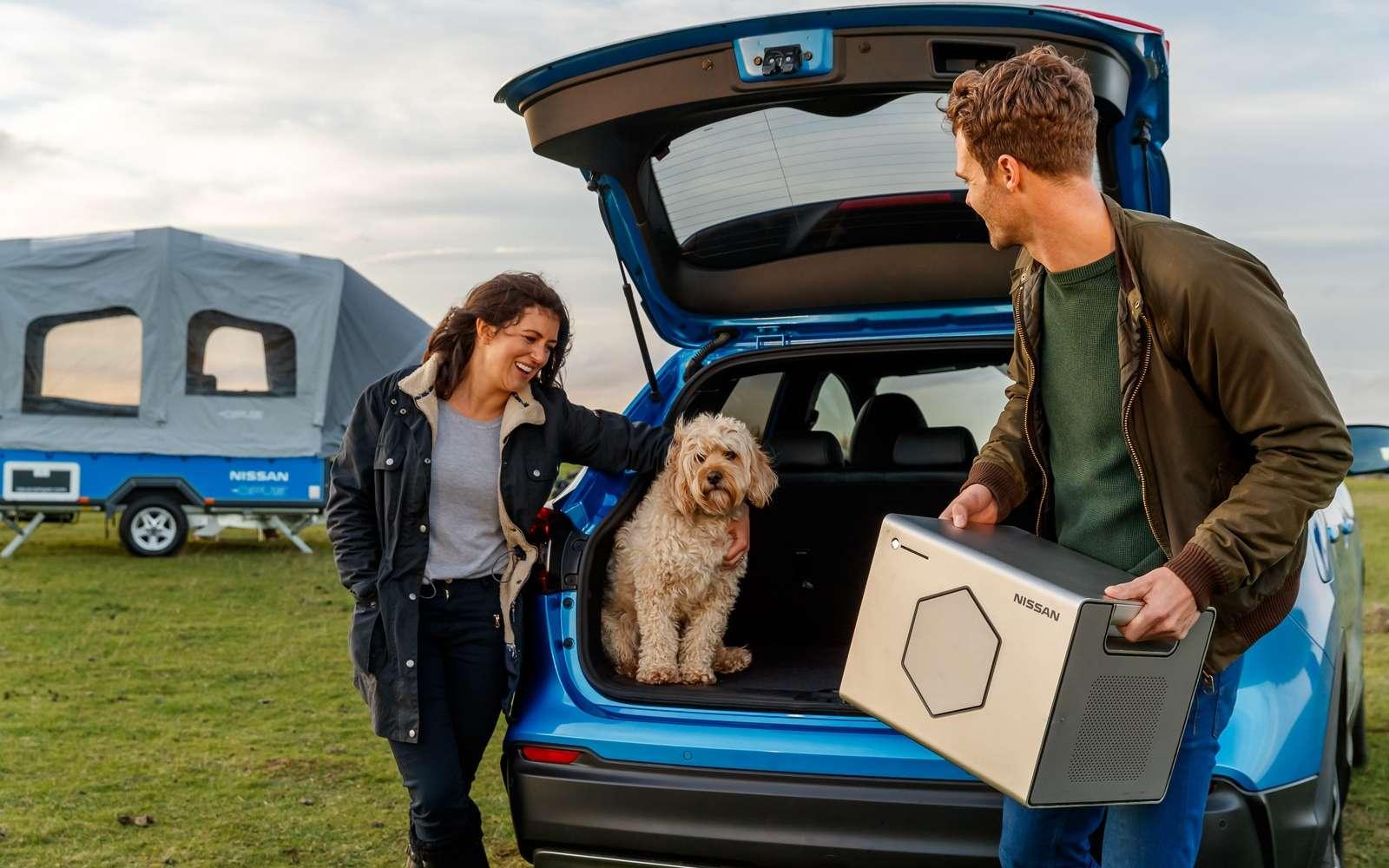 Le pack Energy Roam est composé de batteries de Nissan Leaf recyclées. © Nissan
