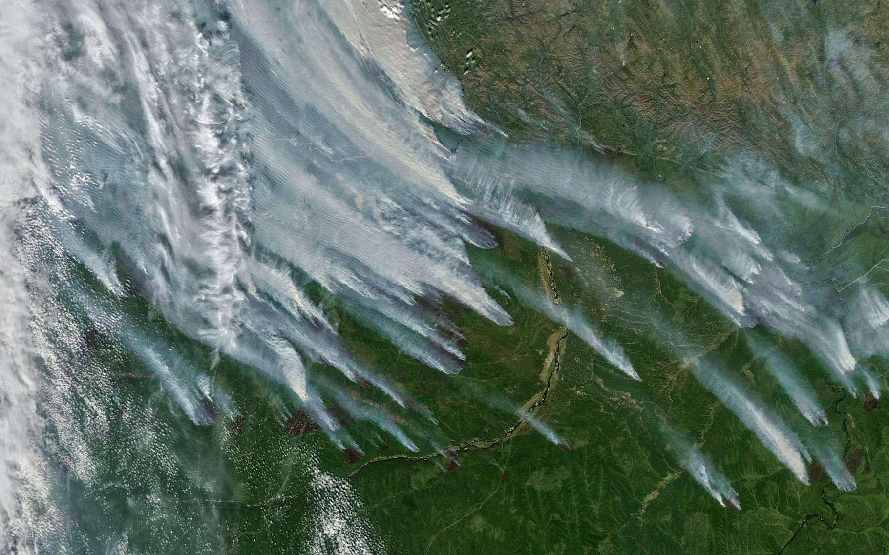 En Sibérie, les premiers feux de forêt de la saison se sont déclarés dès le mois de mai 2021. Aujourd'hui, ils atteignent des intensités record. © Nasa Earth Observatory
