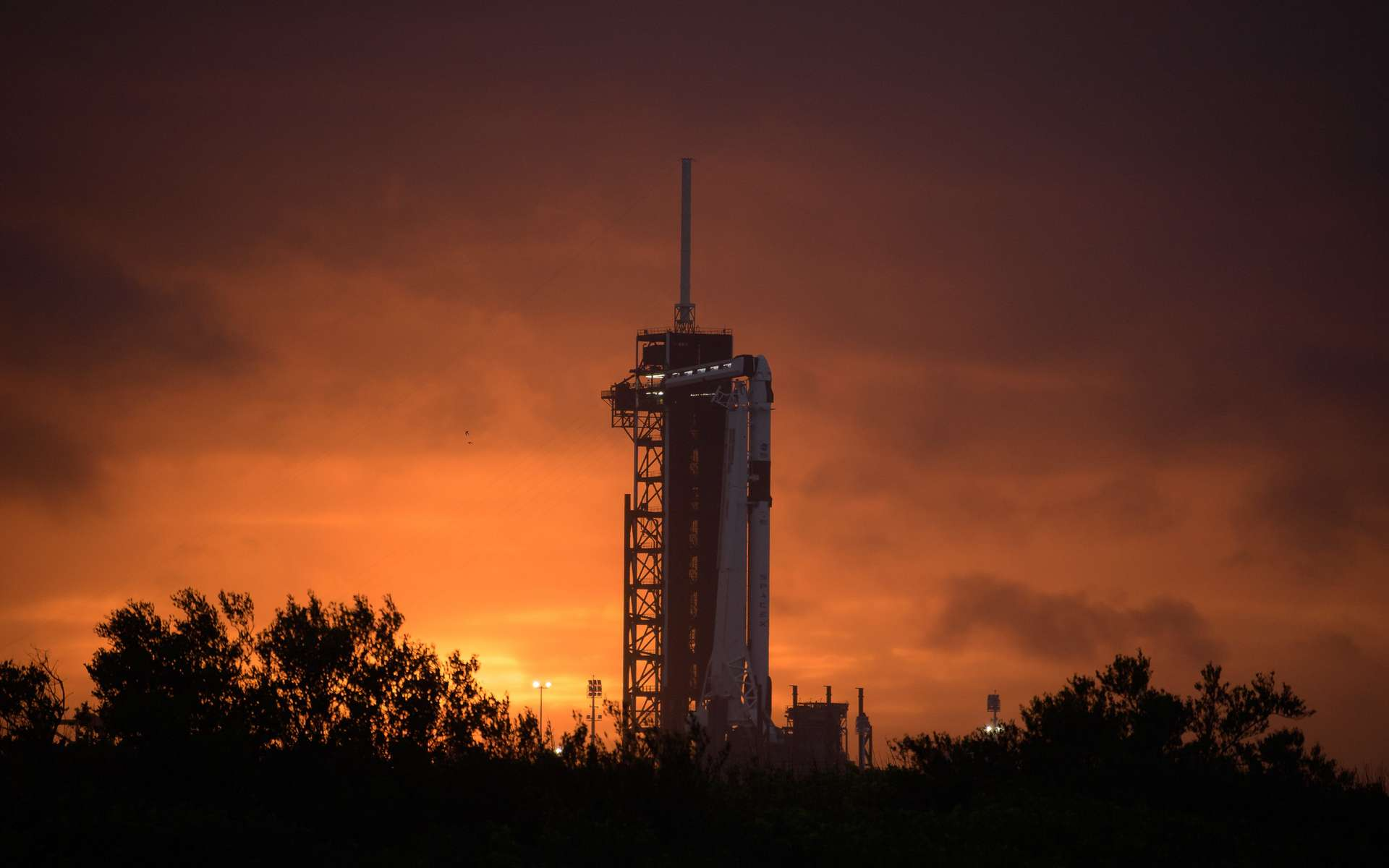 La fusée Falcon 9 sur le pas de tire 39A © NASA/Bill Ingalls