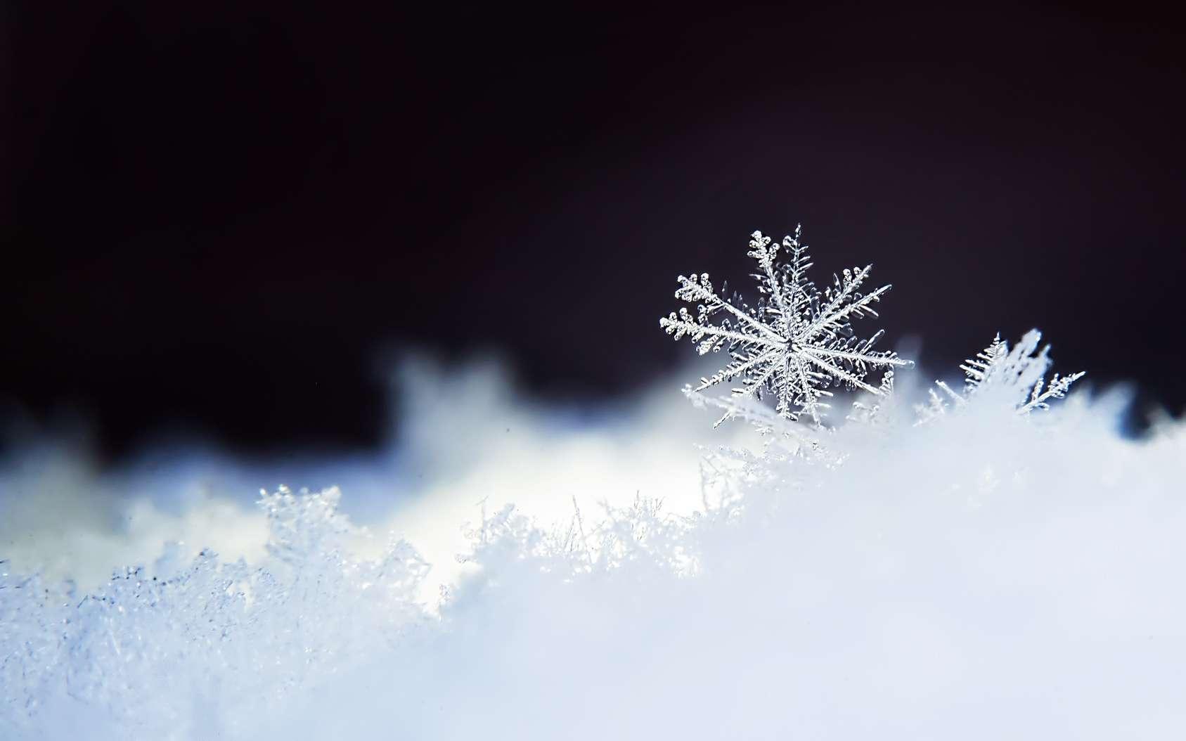 Les flocons de neige en forme d'étoiles ne font que quelques millimètres de longueur et quelques centièmes de millimètre d'épaisseur. Ils constituent une couche de neige poudreuse, plus ou moins légère selon la température de l'air et la force du vent durant leur chute. © Elina Leonova, fotolia