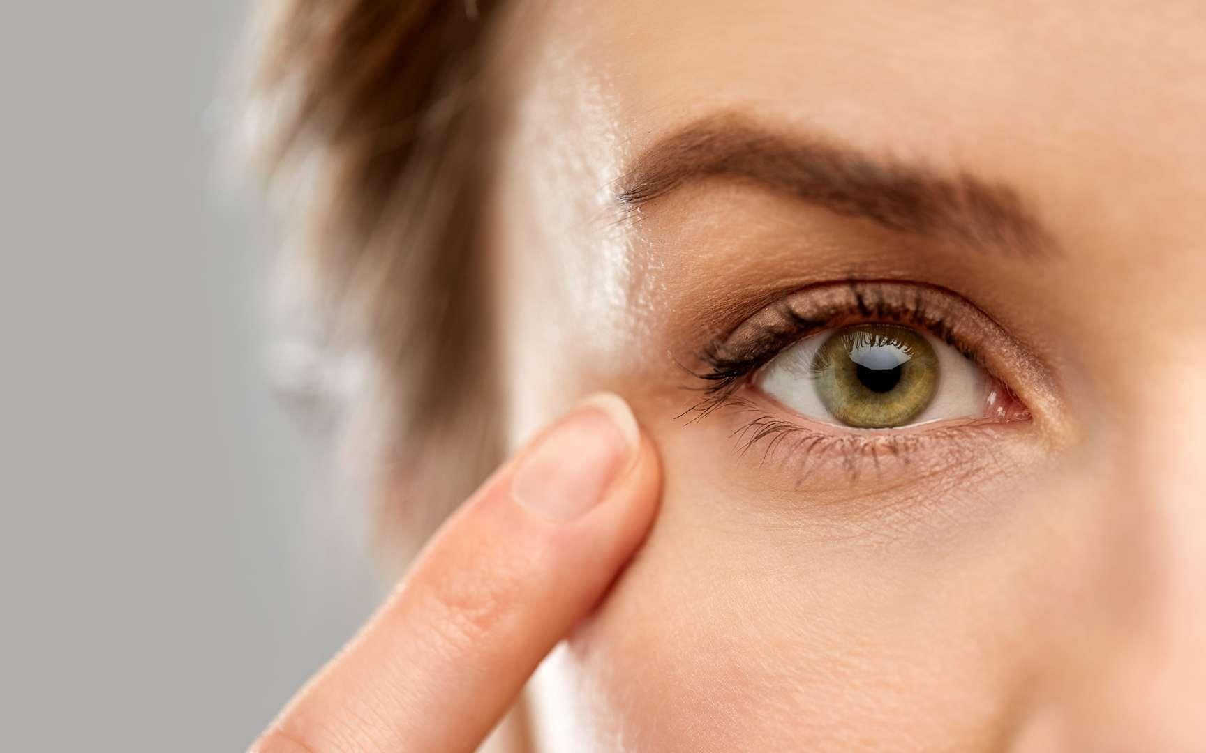 Dans l'œil, la rétine est le tissu photorécepteur. © Syda Productions, Fotolia