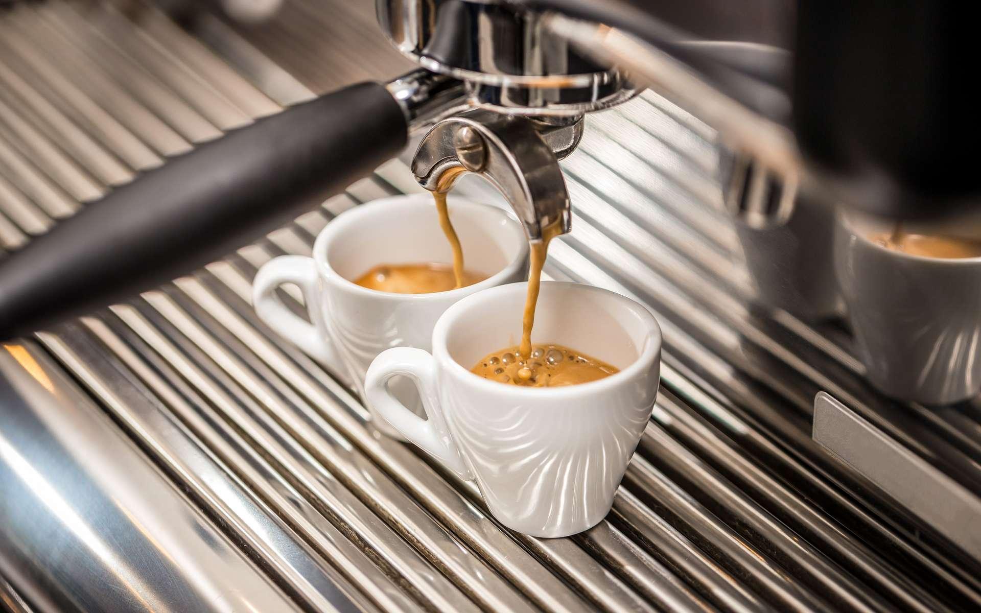 Ce modèle mathématique permet de concilier qualité, durabilité et économie pour le secteur du café. © GrafVision, Adobe Stock