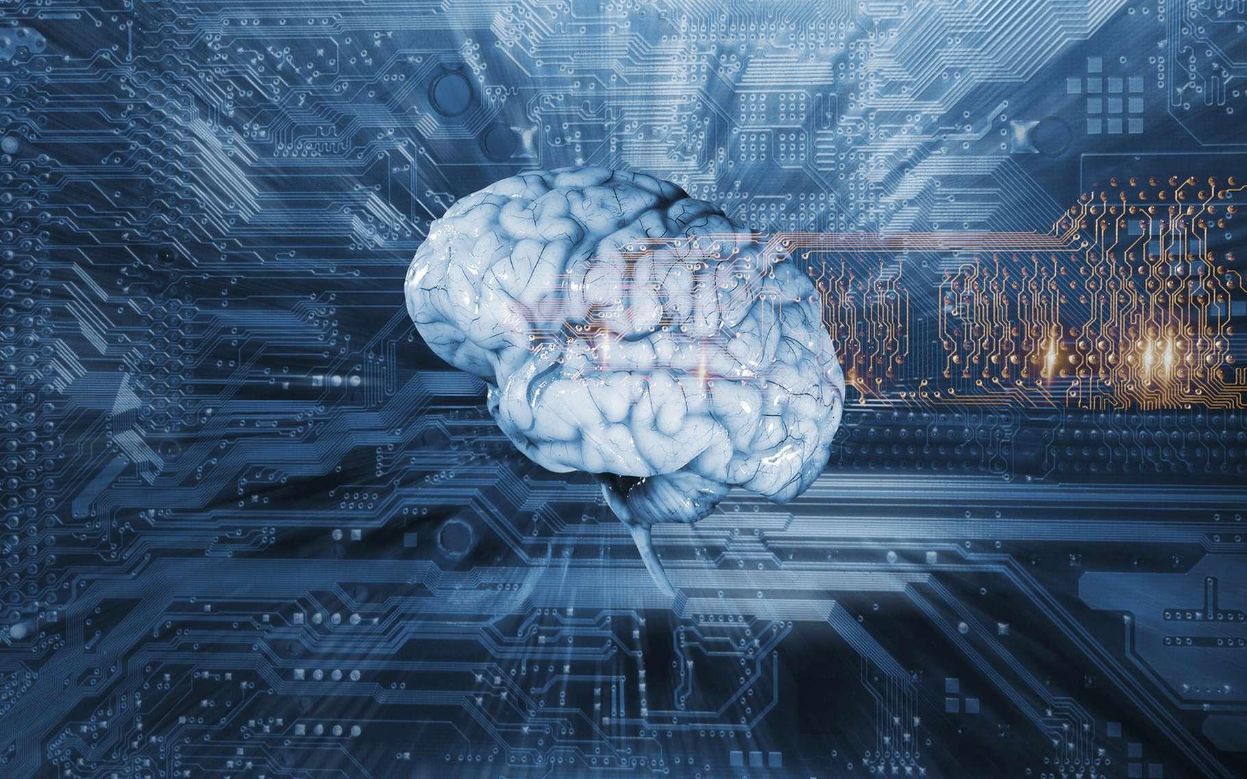 Grâce aux réseaux neuronaux, les ordinateurs accèdent aujourd'hui à toute une série de tâches qui leur étaient jusqu'alors interdites comme la reconnaissance faciale ou la traduction automatique. © Christian Lagerek, Shutterstock