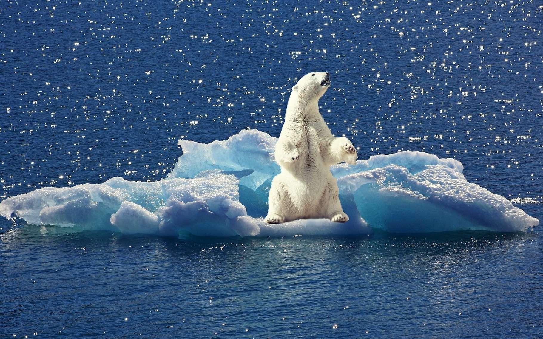 Hausse de la température des océans, élévation du niveau de la mer, accroissement de l'acidification des océans, recul de la banquise et des glaciers. Le dernier rapport de l'Organisation météorologique mondiale dresse, pour 2018, un triste état du climat. © cocoparisienne, Pixabay, Pixabay License