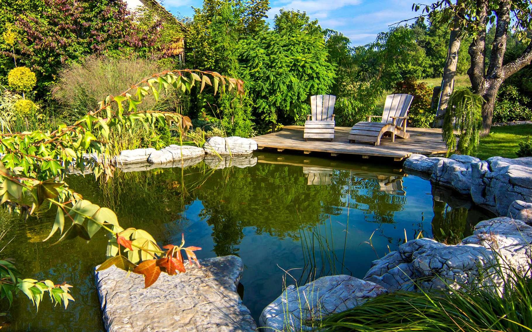 Construire Son Bassin De Jardin construire un bassin de jardin | dossier