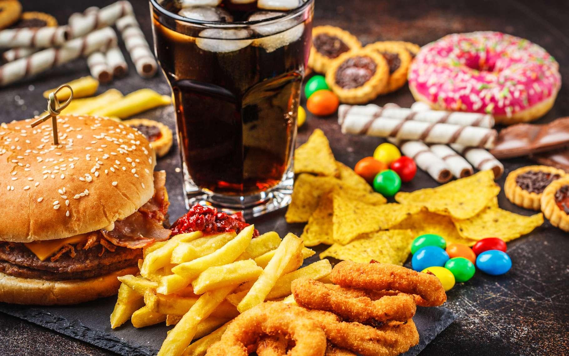 Selon une nouvelle étude, notre cerveau serait affecté par la malbouffe en seulement trois jours d'un régime trop riche en graisses et en glucides. © vaaseenaa, Fotolia