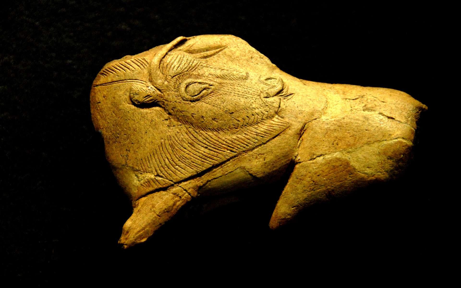 Découvrez l'art préhistorique en six images exceptionnelles. Ici, une représentation de bison avec la tête se retournant sur le corps pour se lécher le flanc. Cet objet en bois de renne est peut-être un fragment de propulseur (instrument de chasse muni d'un crochet, permettant d'allonger le bras pour projeter les javelots). Il a été trouvé dans l'abri de la Madeleine, en Dordogne. Il daterait de 13.000 av. J.-C. © Jochen Jahnke, Wikipédia, GFDL