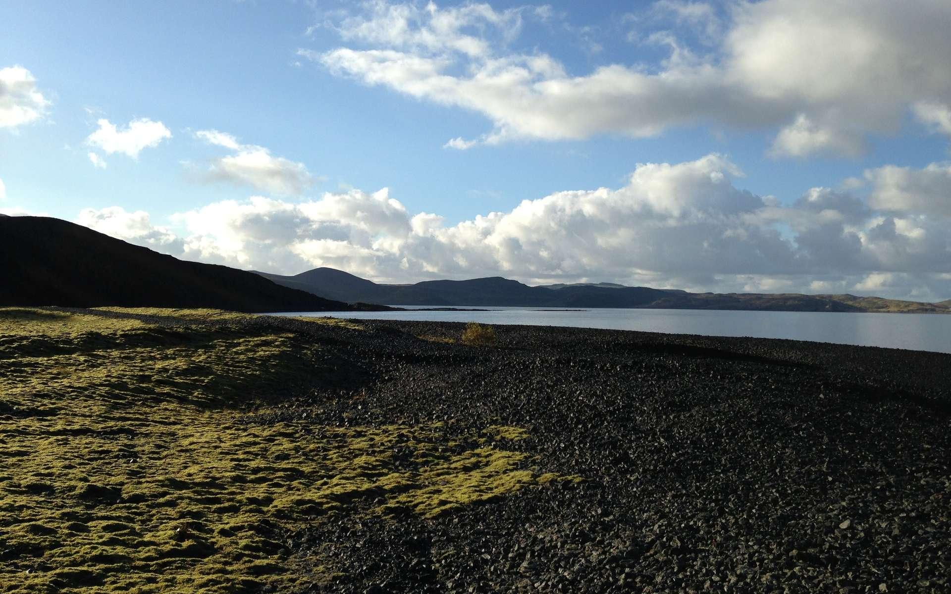 Un paysage d'Islande avec des mousses en bordure d'un rivage. Il donne une idée de l'aspect de la Terre quand les plantes ont commencé à coloniser les continents. © Ria Mitchell, cc by sa 4.0