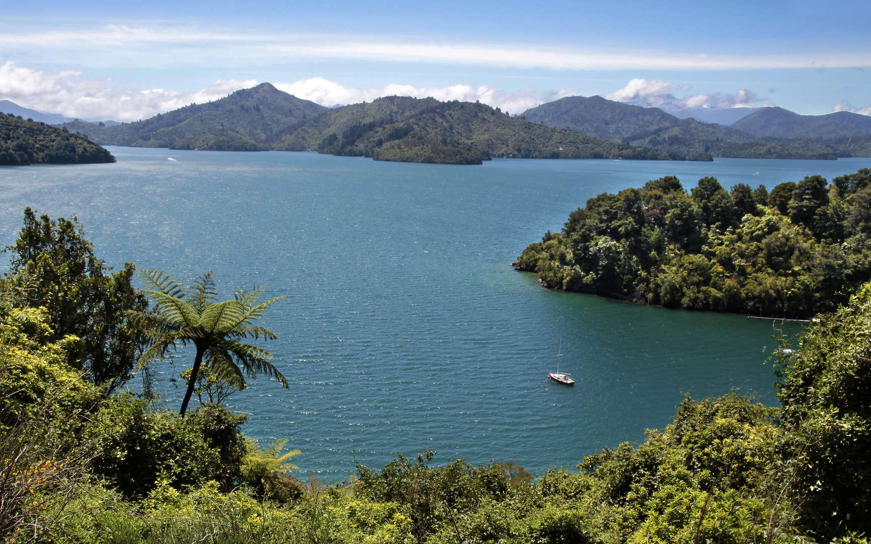Dans le Pacifique sud, la Nouvelle-Zélande se situe sur une zone sismique, entre deux plaques tectoniques. © cmfotoworks, Istock.com