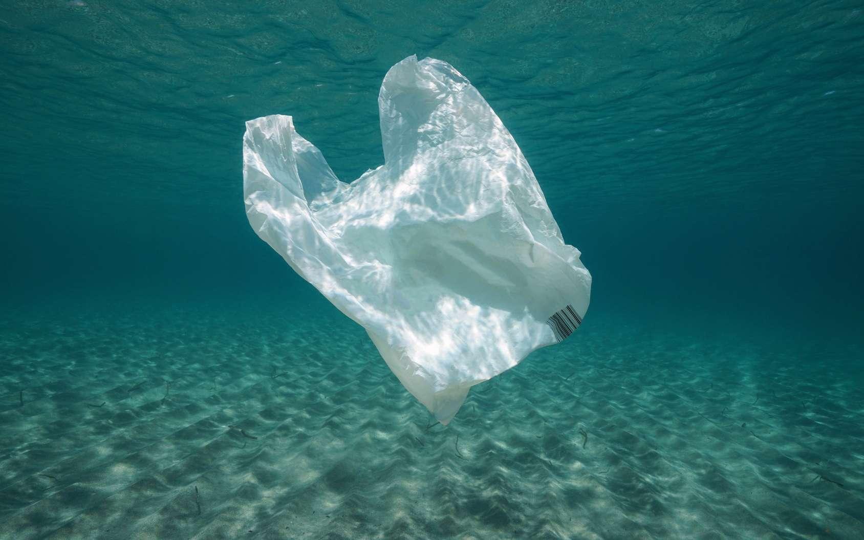 Un sac plastique biodégradable à partir de calcaire qui se dissout dans l'eau. © damedias - Fotolia.com