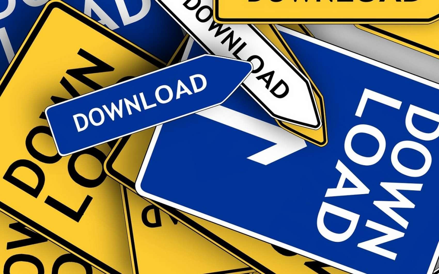 Le réseau BitTorrent est la meilleure solution P2P actuelle. © Pixabay.com