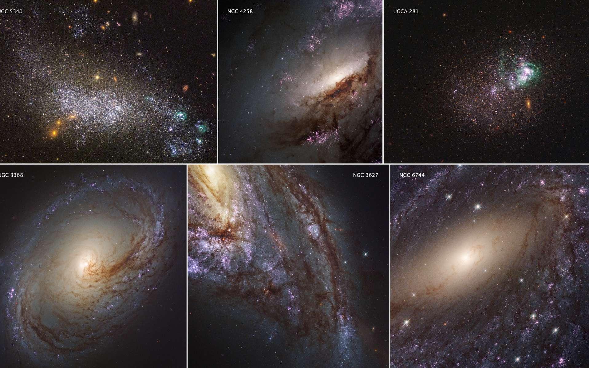 Des chercheurs ont entraîné une intelligence artificielle à classer les galaxies suivant leur stade d'évolution. Cela peut les aider à mieux comprendre l'histoire et la vie des galaxies. ©️ Nasa, ESA, Legus Team