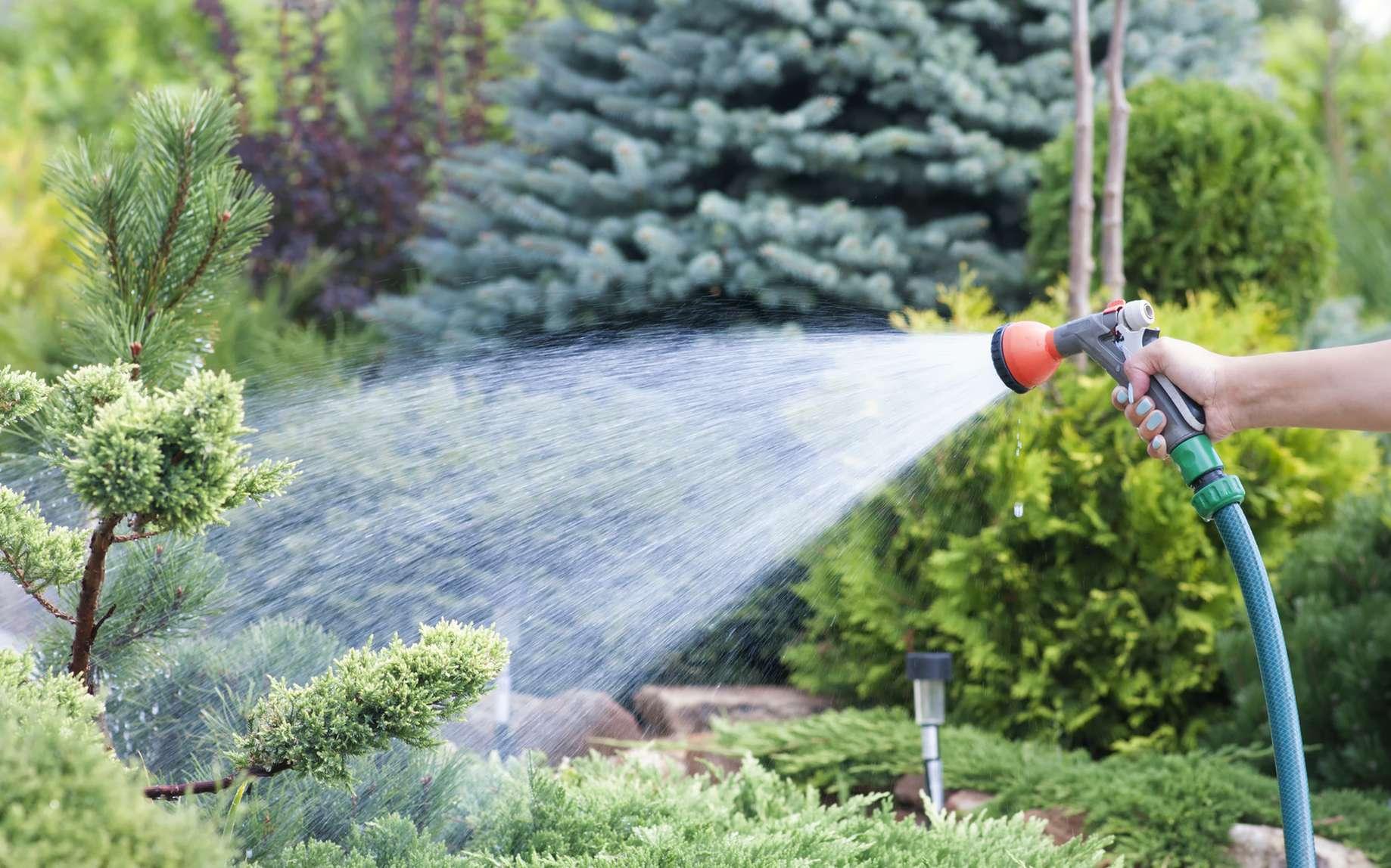 Un jardin bien pensé et bien arrosé peut consommer peu d'eau du robinet. © Irina, fotolia