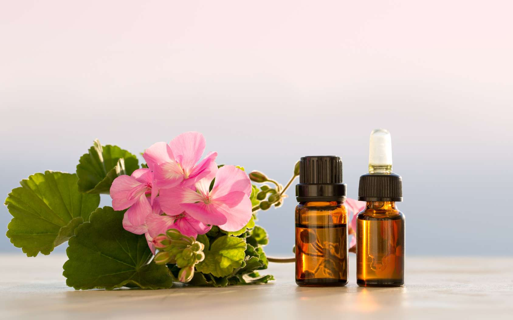 Si l'huile essentielle de géranium rosat permet d'aider le contrôle de la glycémie chez les personnes diabétiques, elle ne remplace aucunement les traitements allopathiques classiques. © orlio, Fotolia