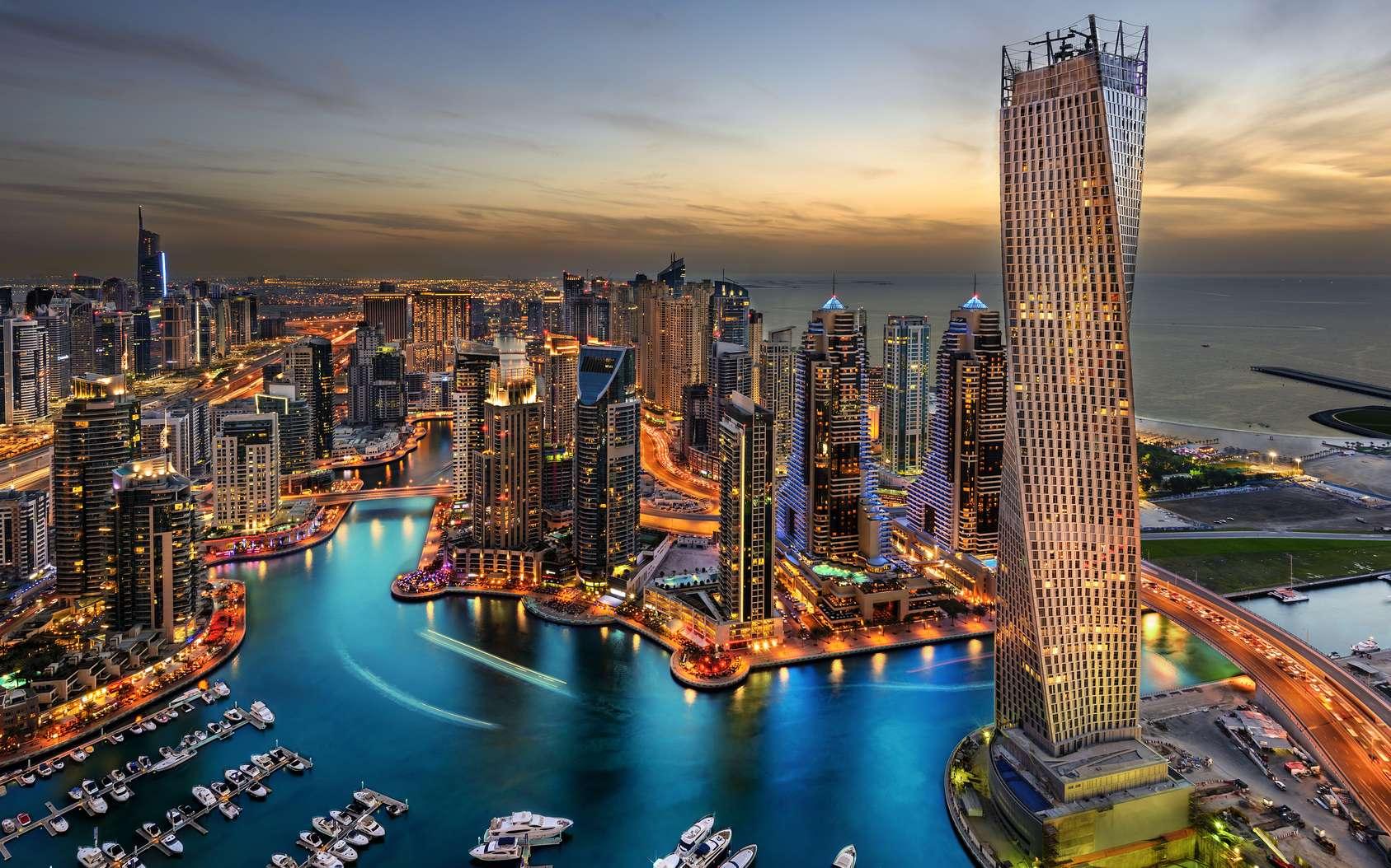 La ville de Dubaï entamera son test des plaques d'immatriculation numériques le mois prochain. © Ajandali, Fotolia