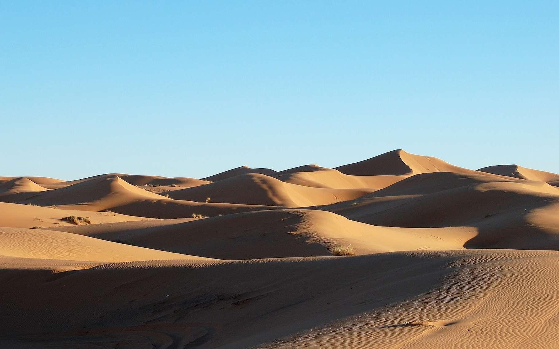 En analysant des poussières, des chercheurs du Massachusetts Institute of Technology (MIT, États-Unis) ont découvert que le Sahara a tendance à basculer entre étendue de verdure et désert tous les 20.000 ans, en phase avec l'évolution de l'inclinaison de la Terre. © Ferran Feixa, Unsplash