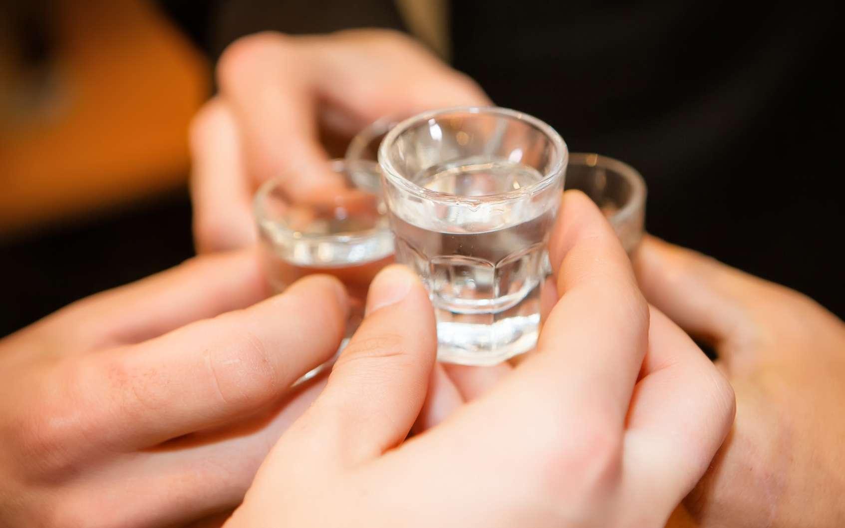 La vodka en Russie est l'alcool le plus apprécié par la population. © liandstudio, fotolia