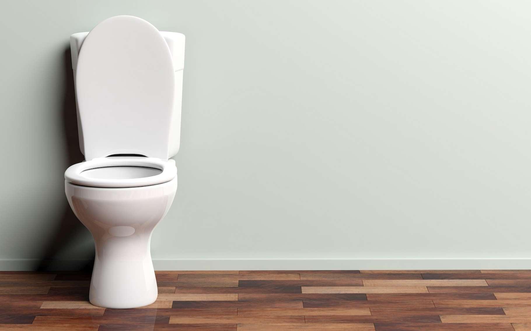 Des chercheurs travaillent au développement de toilettes intelligentes capables de surveiller notre santé en analysant nos urines. © Rawf8, Adobe Stock