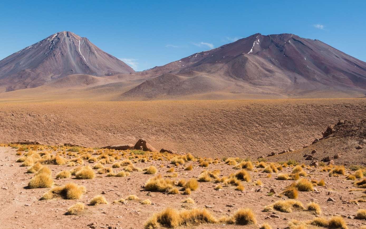 Le désert d'Atacama est, avec les Vallées Sèches de l'Antarctique, l'un des endroits les plus secs de la planète. © Rex Wholster, fotolia