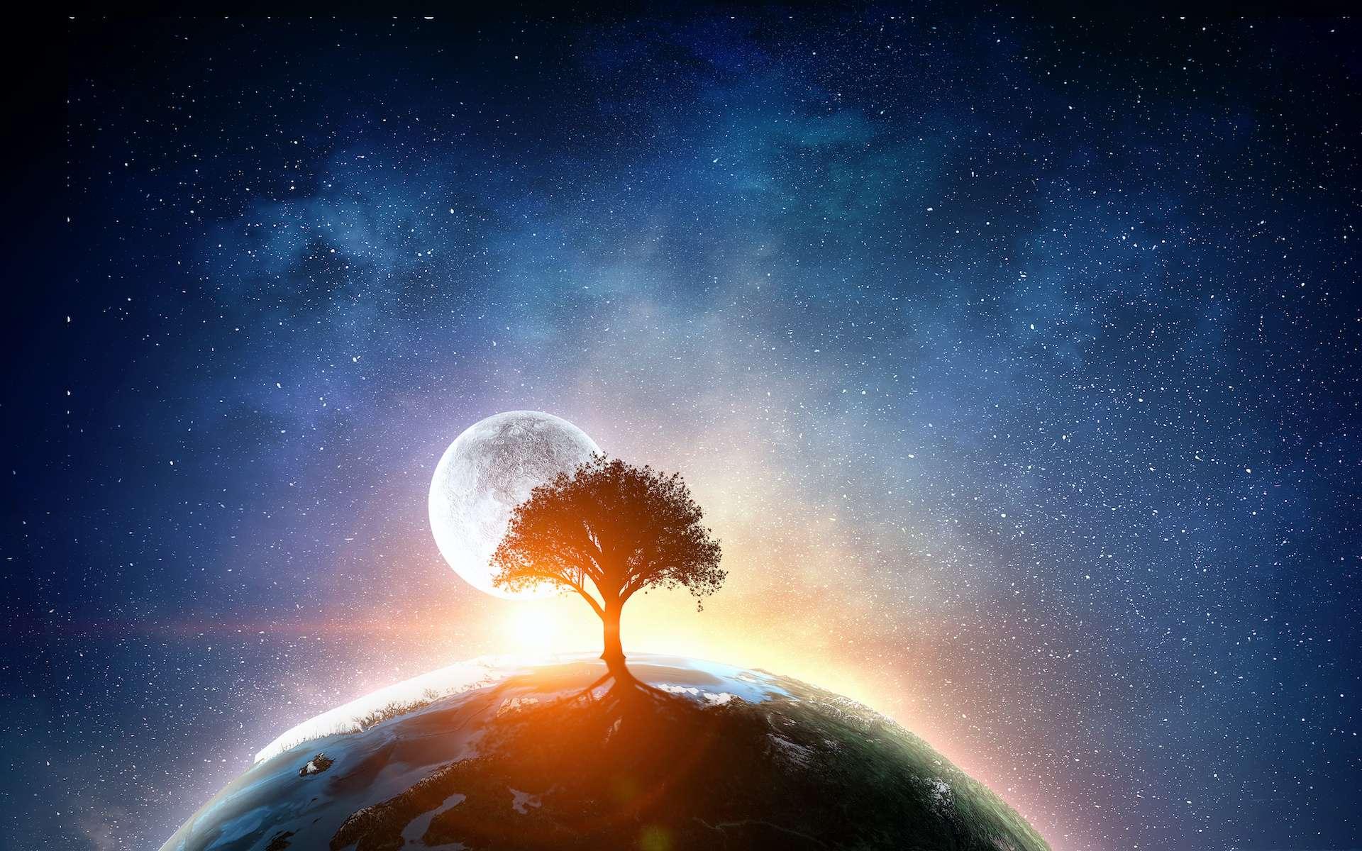 La vie sur Terre, un extraordinaire concours de circonstances ? © Sergey Nivens, Adobe Stock