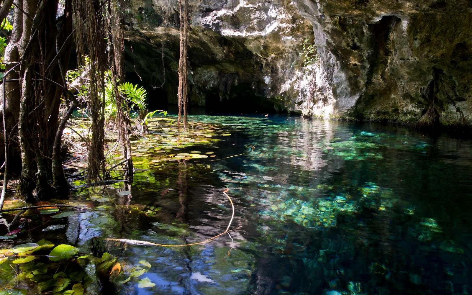 Gran Cenote est une des entrées de Sac Actun, le plus vaste réseaux de cavernes submergées du monde, localisé au Mexique. © Ken Thomas, Wikimedia Commons