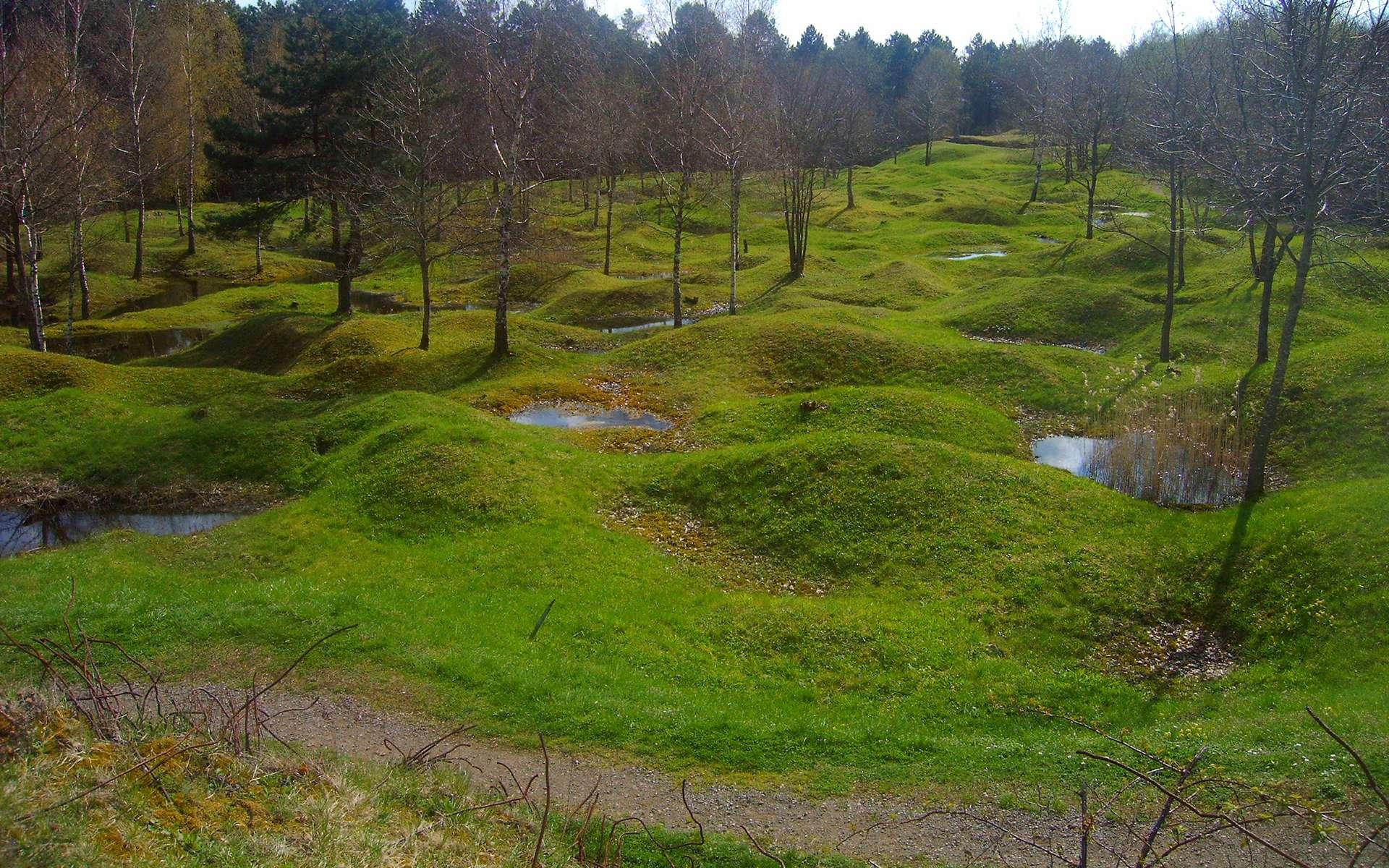La bataille de Verdun en 1916 a laissé des traces encore visibles aujourd'hui. © Œuvre personnelle, Wikimedia Commons, Domaine public