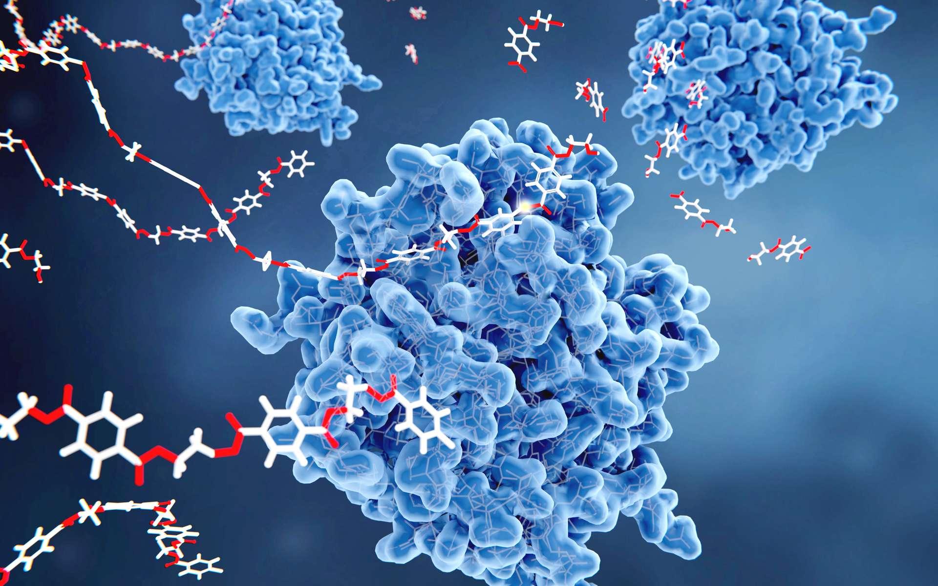 L'enzyme PETase dégrade le polymère. © Juan Gärtner, Fotolia