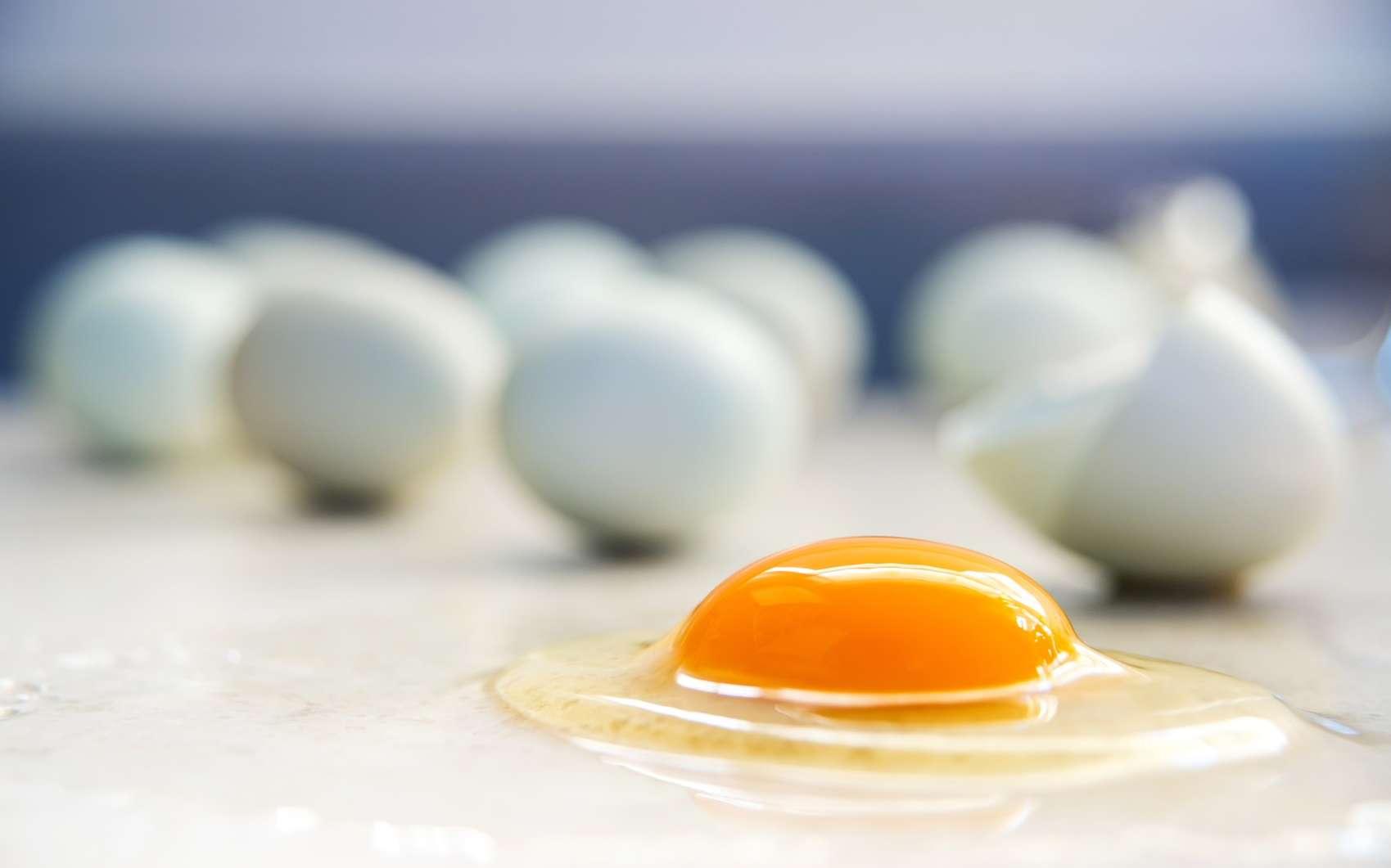 Le jaune d'œuf est un aliment particulièrement riche en choline. © Anna Hoychuk, Fotolia