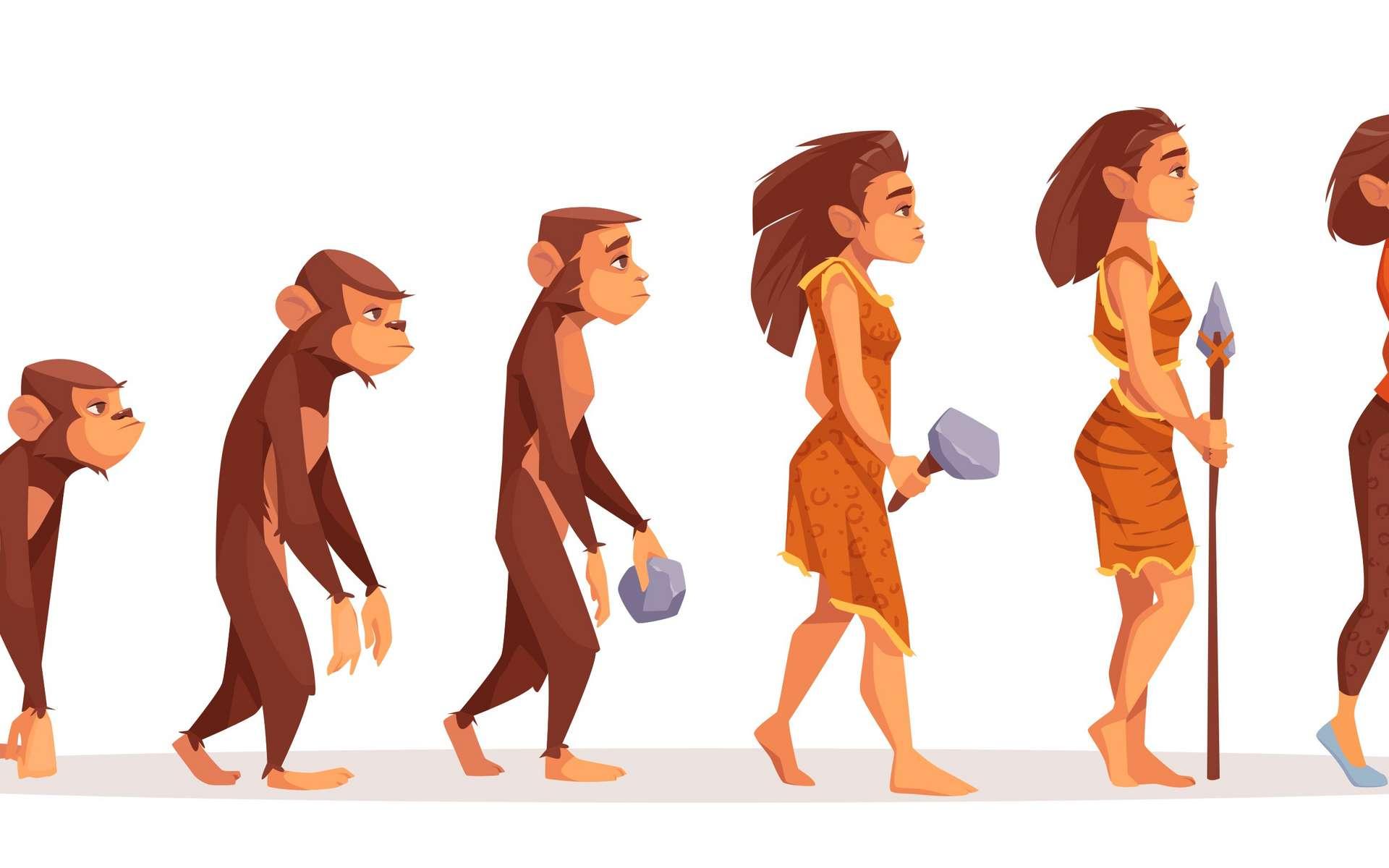 D'après des chercheurs, l'humain présente des traces génomiques de domestication. © Vectorpouch, Adobe Stock