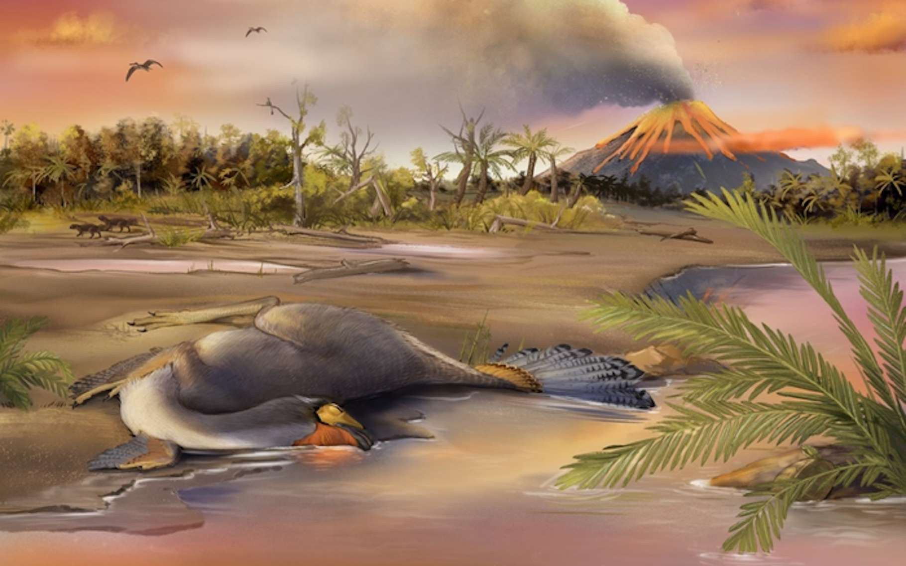 Une reconstitution de la région dans laquelle ont été trouvés les fossiles du dinosaure que des chercheurs ont étudiés pour y découvrir des molécules organiques vieilles de 125 millions d'années. © Qiuyang Zheng, Institut de paléontologie des vertébrés et de paléoanthropologie