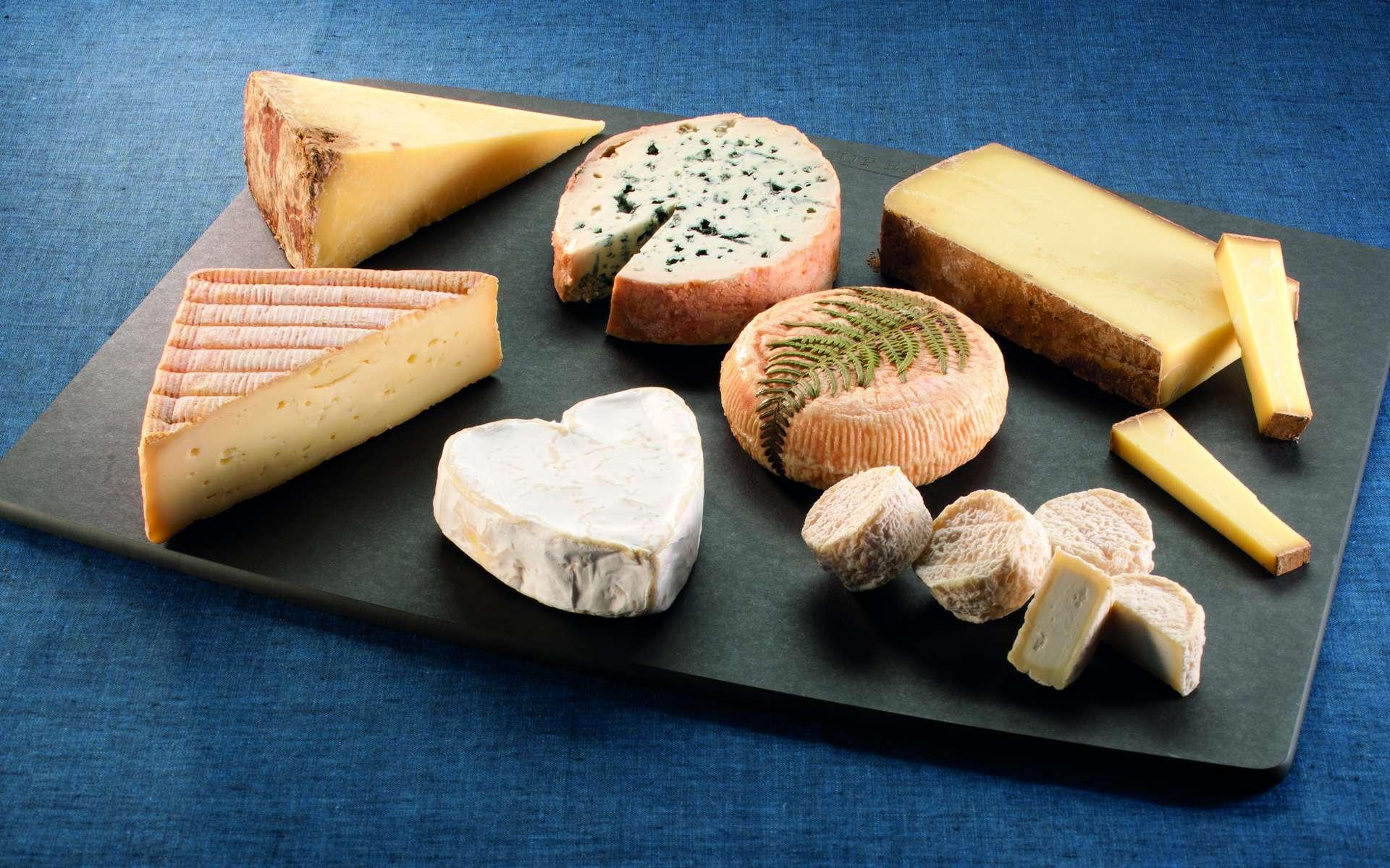 Connaissez-vous les fromages de nos régions françaises ? © Studio B, Cniel