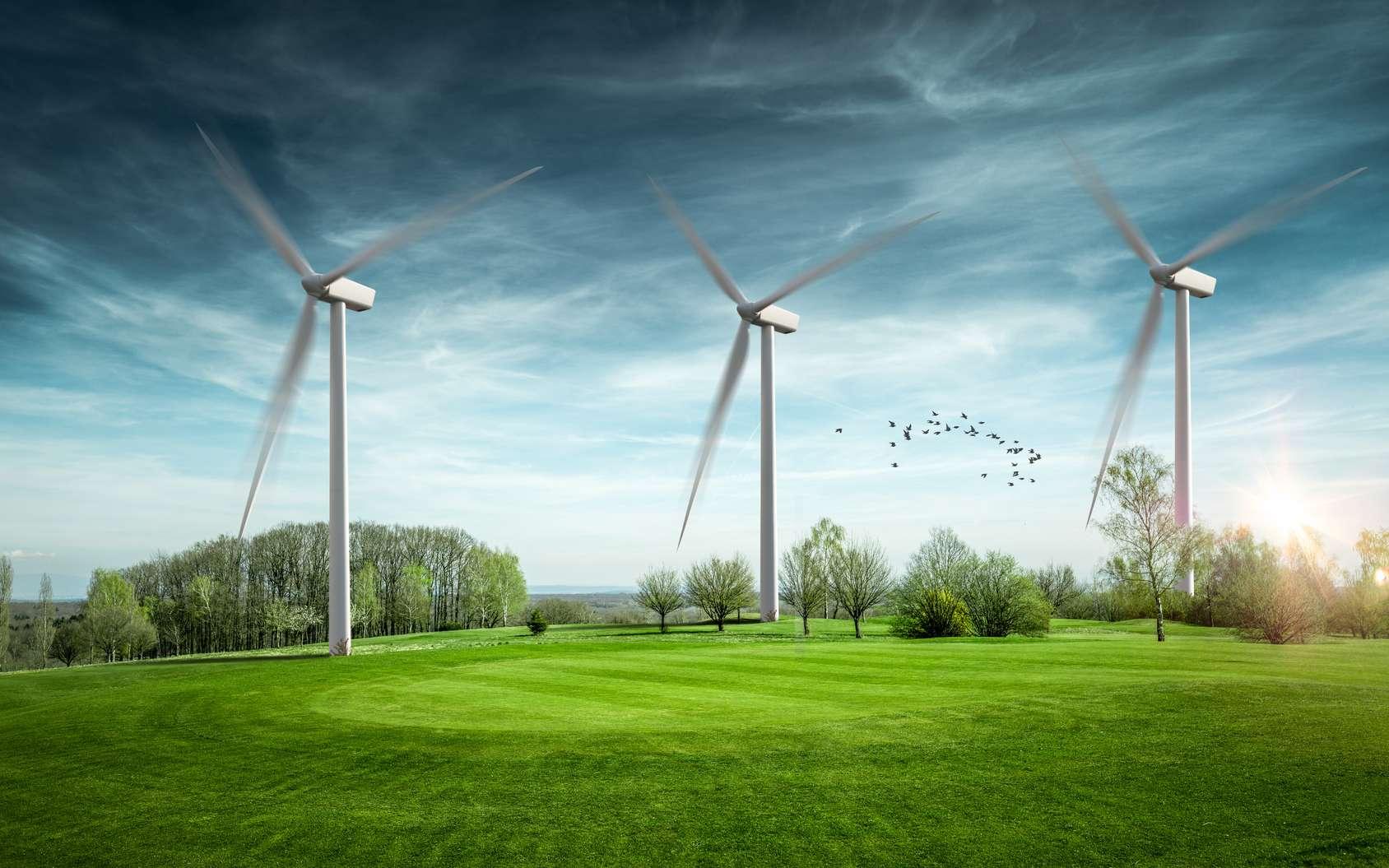 L'énergie éolienne, comme les autres sources renouvelables, est sous-exploitée en France. © Chlorophylle, Fotolia