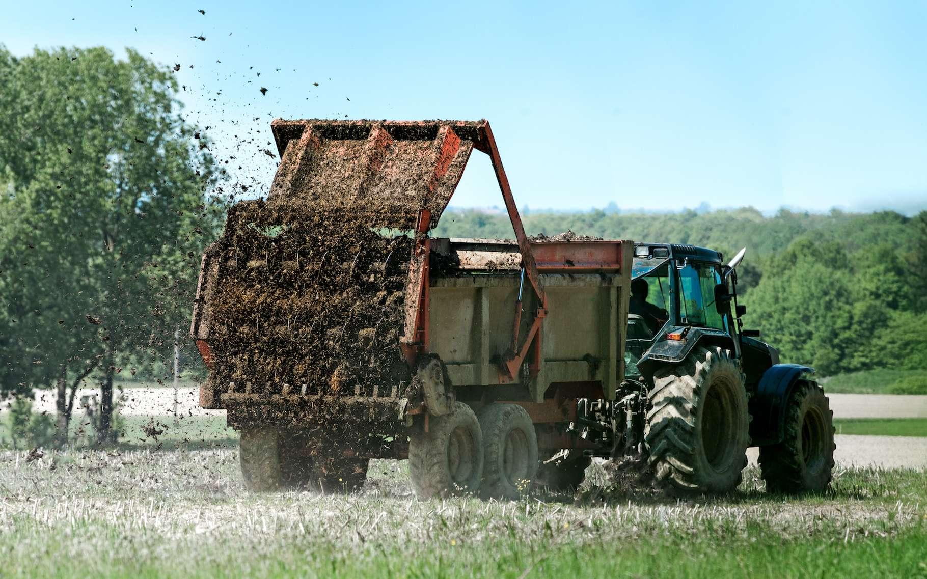 Le pic de pollution observé ce week-end sur la France n'est pas seulement dû aux épandages agricoles. © Maurice Metzger, Adobe Stock