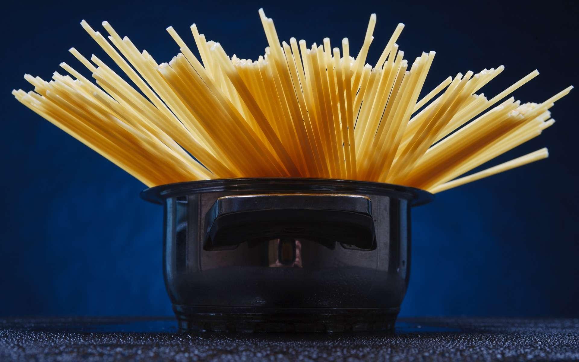 Le spaghetti fait l'objet d'un nombre impressionnant d'études scientifiques. © DimaP, Adobe Stock