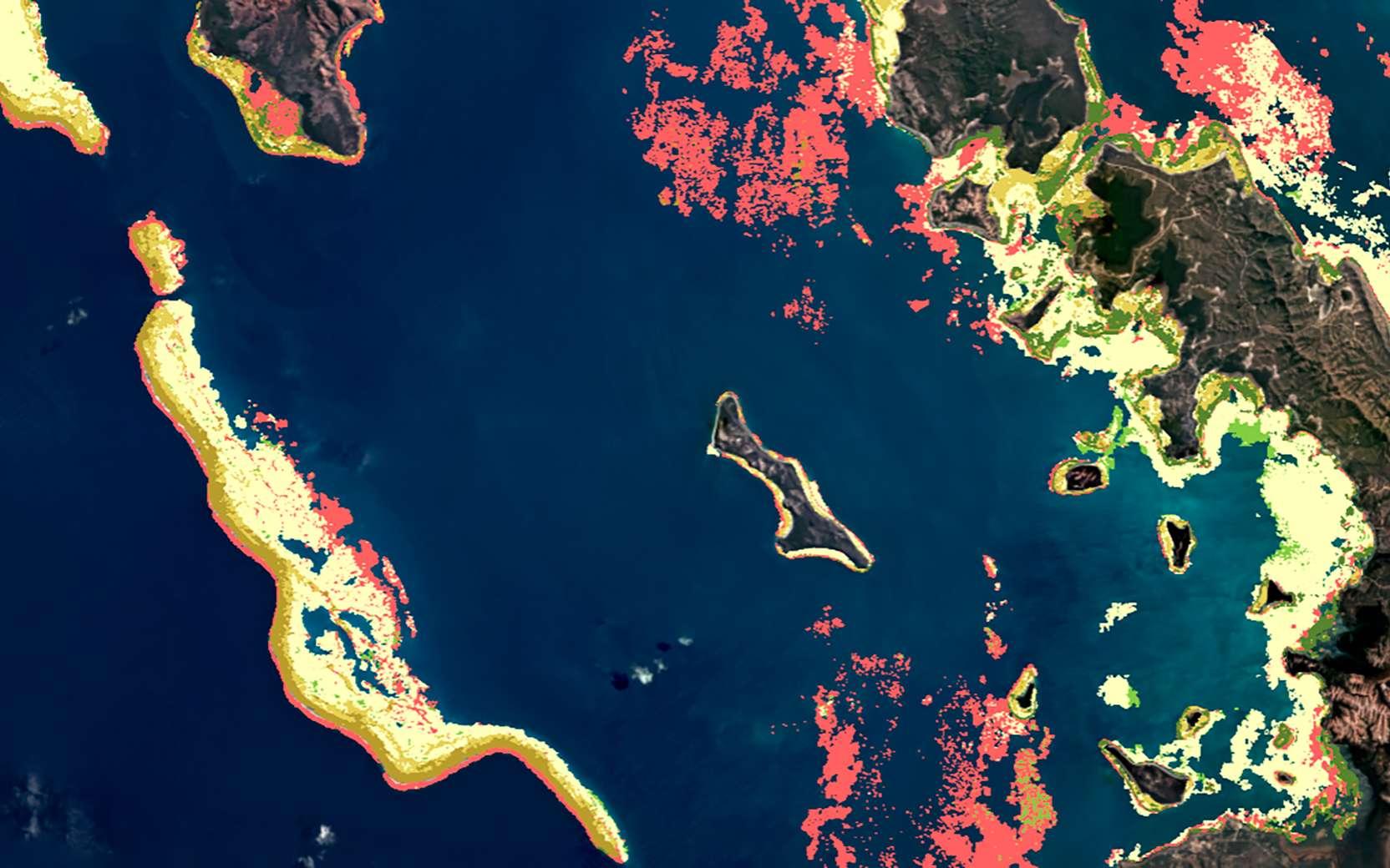 Carte benthique des récifs coralliens de la Nouvelle-Calédonie. Ce type de carte modélise la présence du corail, des micro-algues, de la roche, de débris, de sable et d'herbiers marins. © Planet, Allen Coral Atlas