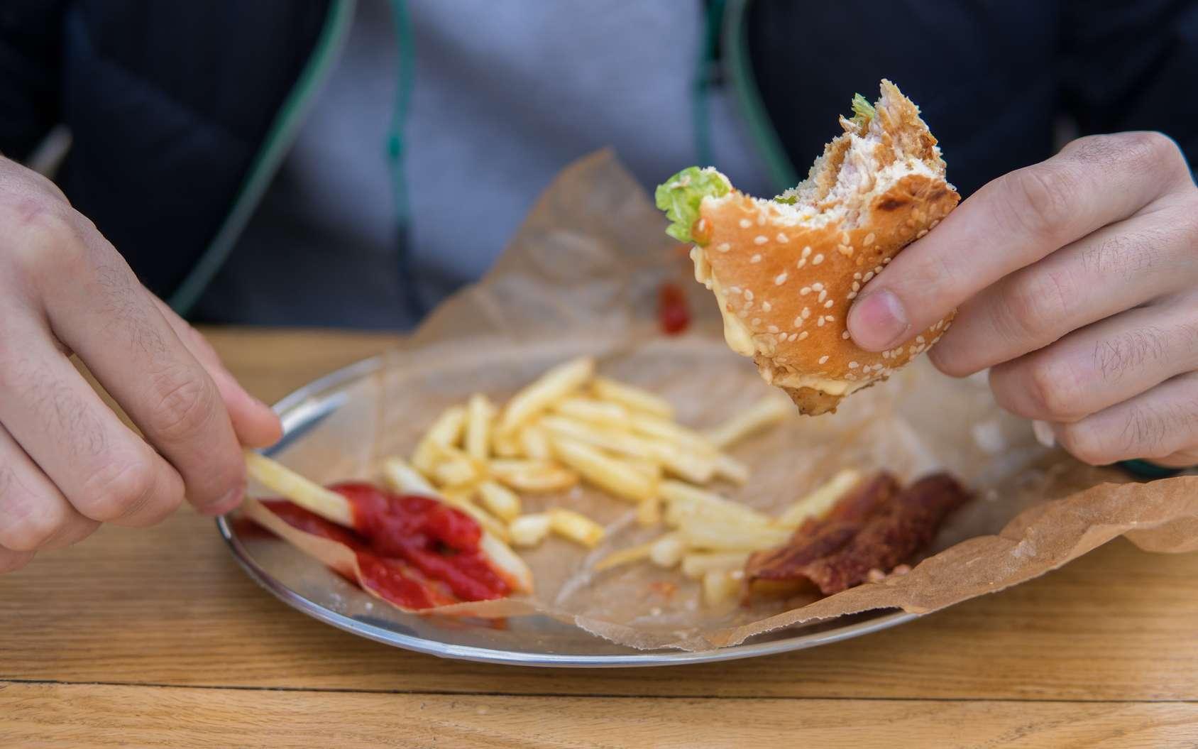 Manger trop gras et trop de viande durant l'adolescence peut affecter la fertilité de manière durable. © Igor Kardasov, Fotolia