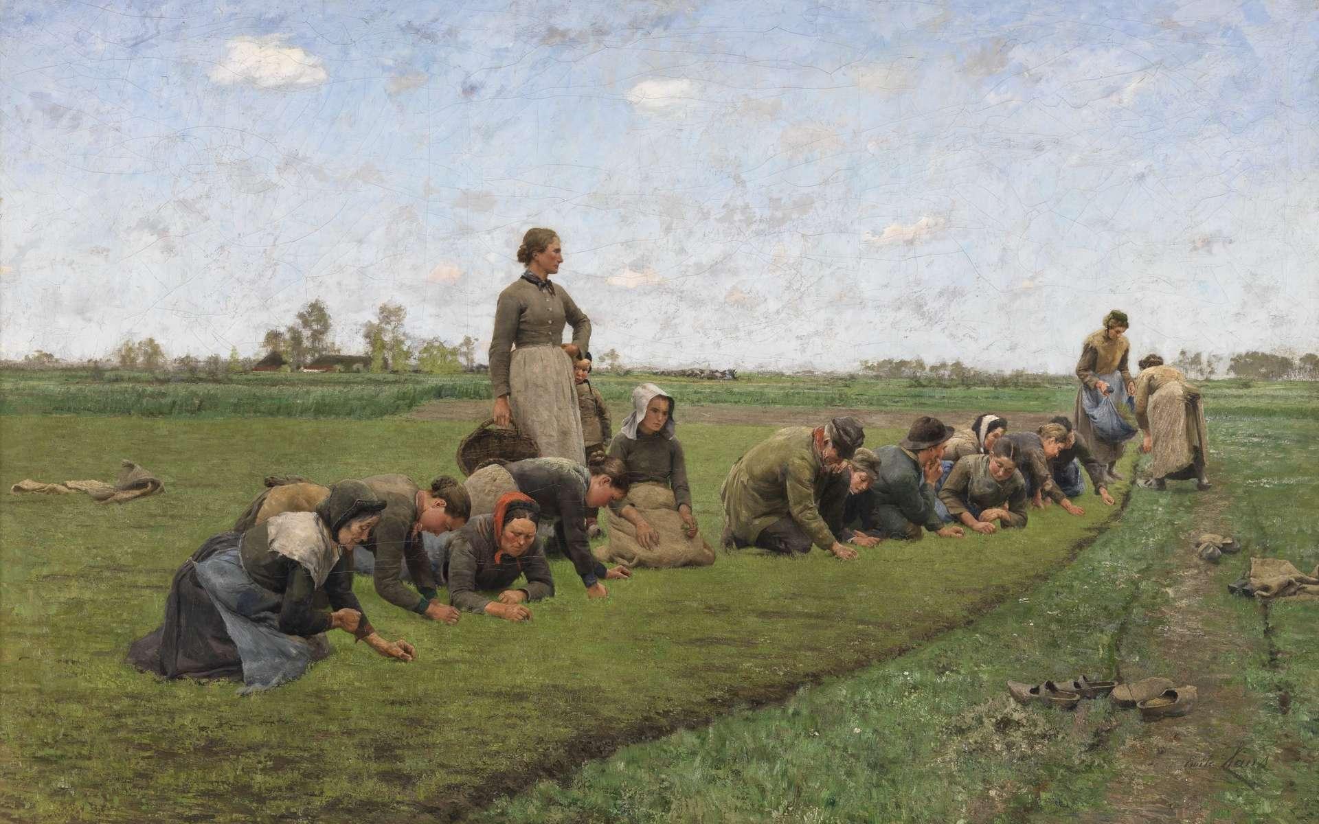 Désherbage du lin en Flandre (1887), Emile Claus, Royal Museum of Fine Arts Antwerp, Wikimédia Commons, Domaine public