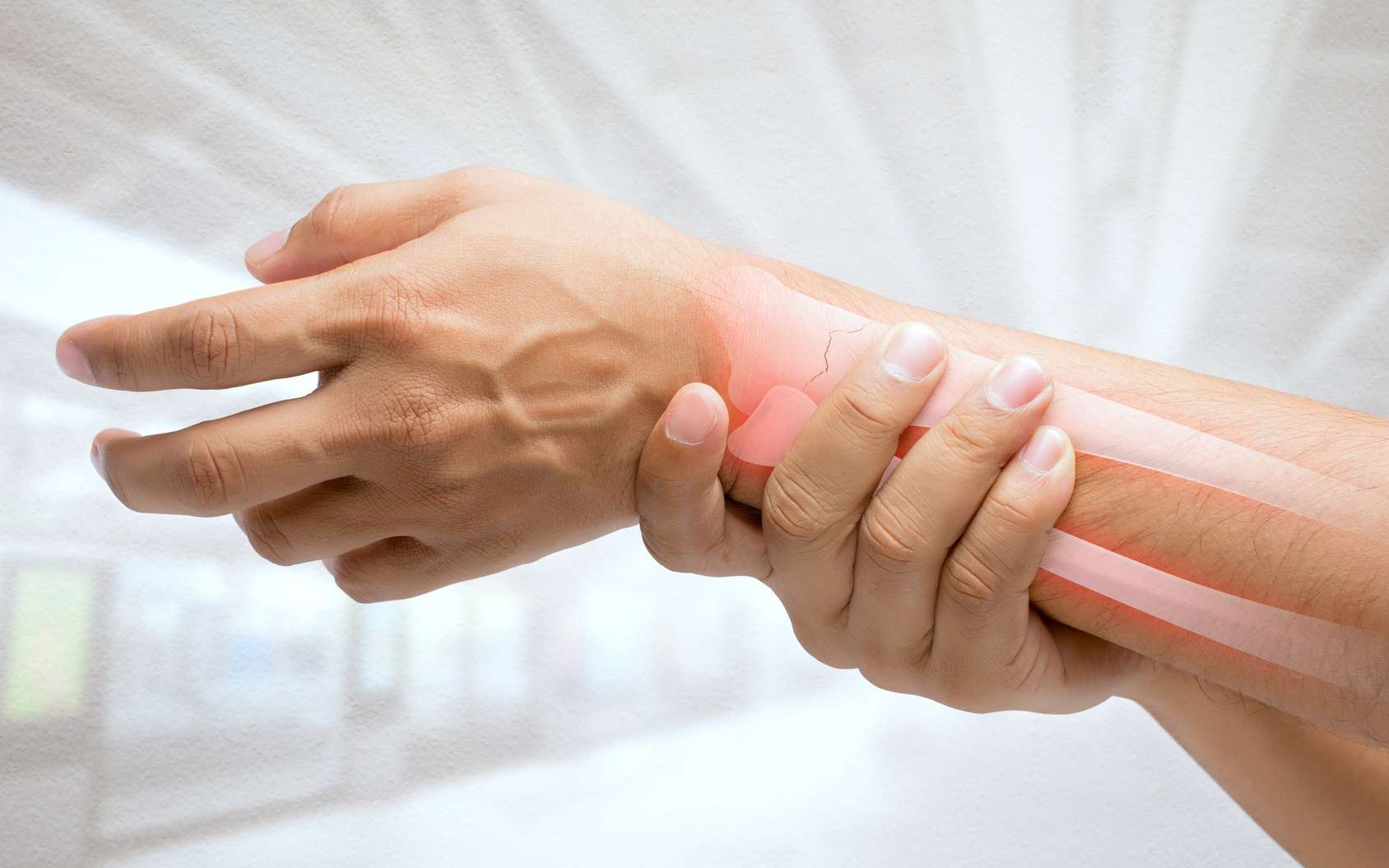 Les os, bien que durs, sont traversés par un réseau de fins vaisseaux sanguins. © Adiano, Fotolia