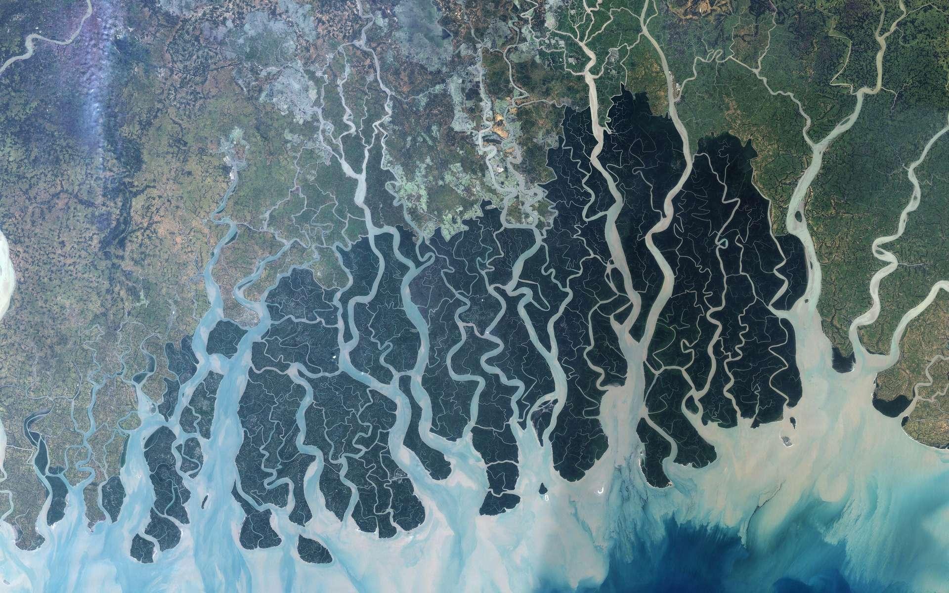 Le delta du Gange, vu ici de l'espace par le satellite Landsat 7 de la Nasa, est le plus grand delta du monde moderne si on omet l'embouchure de l'Amazone, où un véritable delta ne peut en pratique pas se former. © Nasa, Jesse Allen, Earth Observatory, University of Maryland's Global Land Cover Facility, DP