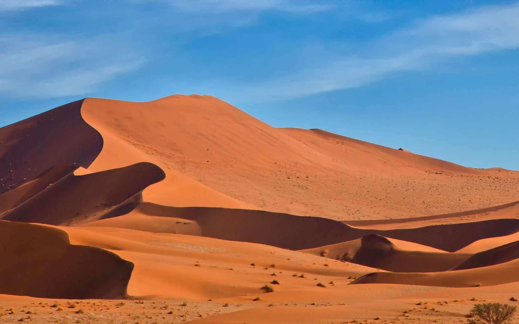 Dans la nature, les dunes sont en mouvement permanent. Et des physiciens de l'université de Cambridge (Royaume-Uni) proposent aujourd'hui un nouveau modèle pour prévoir ces déplacements. Ils ont observé que les dunes «communiquent» entre elles. © Guy Bryant, Adobe Stock