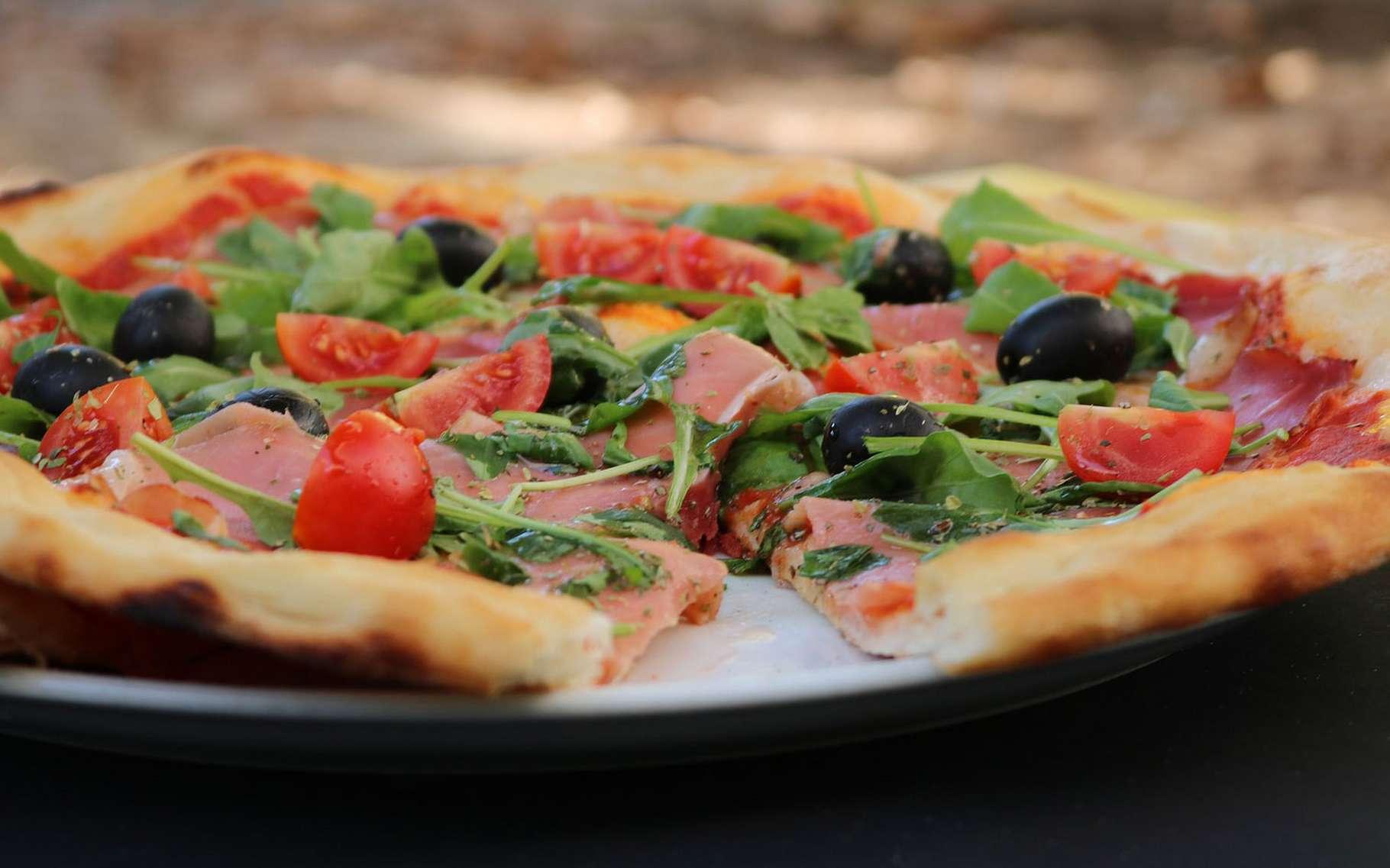 Petite ou grande pizzas ? © Dajana Sehic. Pixabay, DP