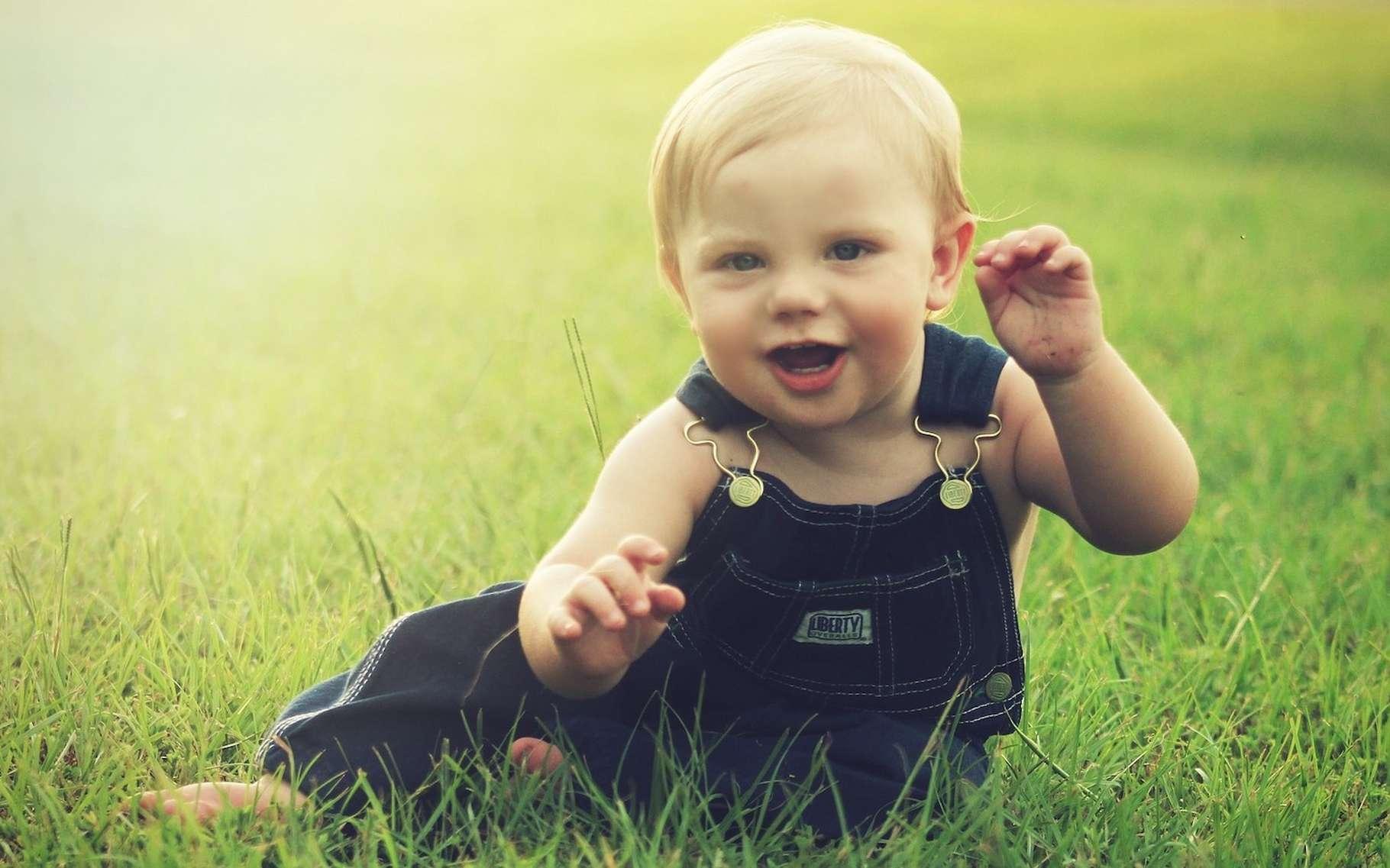 Des chercheurs avancent que sourire rend les gens plus heureux, tout comme prendre un air renfrogné les met en colère ou froncer les sourcils les attriste. © Greyerbaby, Pixabay License