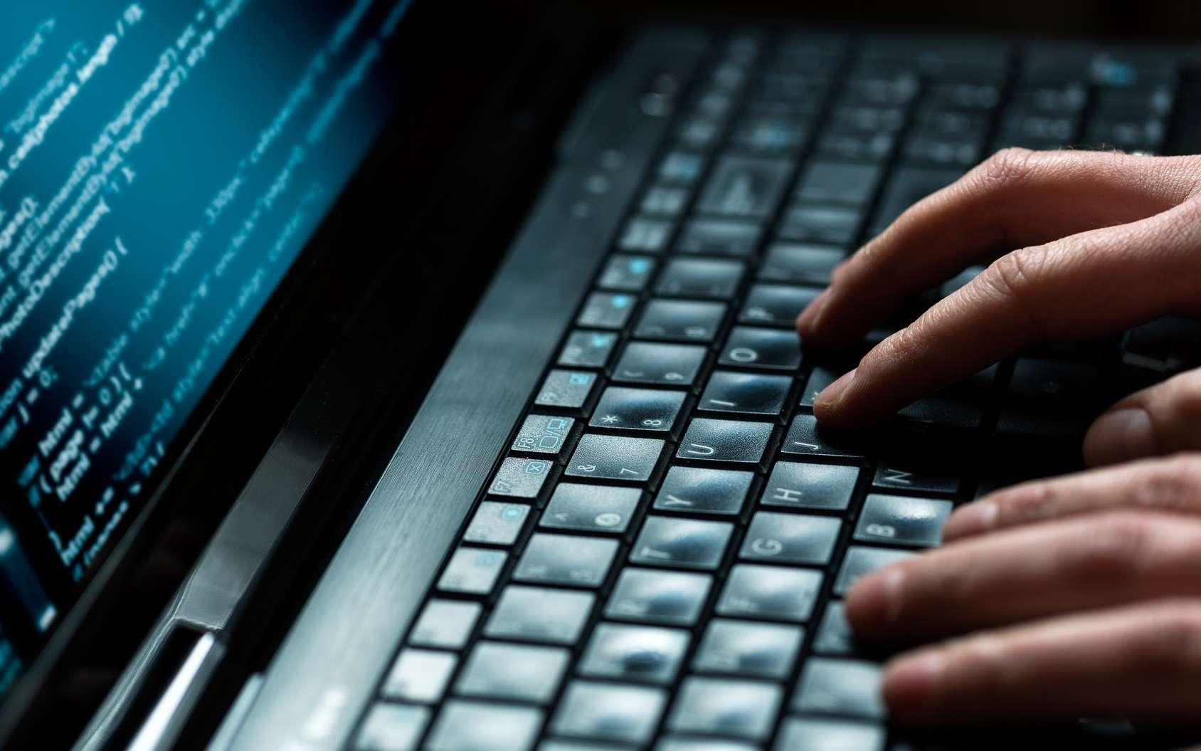 L'attaque par déni de service (DoS) est l'une méthode les plus employées par les cyberpirates. © REDPIXEL, Fotolia